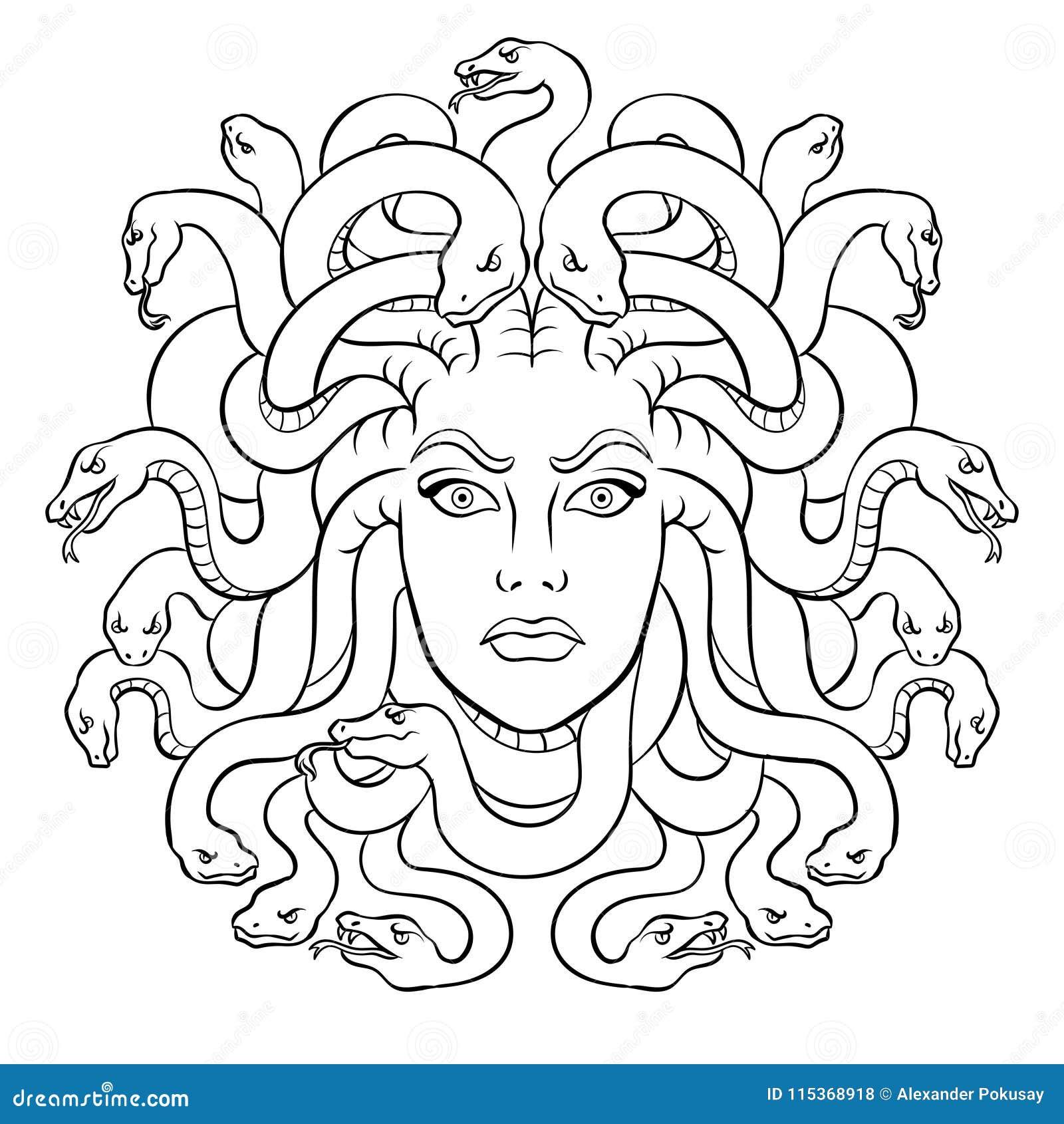 Vector Griego Del Colorante De La Criatura Del Mito De La Medusa Ilustración Del Vector Ilustración De Peligro Griego 115368918