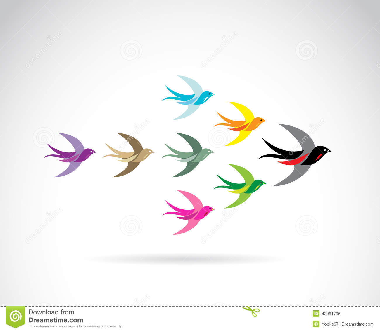 Vector Group Of Colorful Swallow Birds. Stock Vector - Image: 43961796 Group Of Colorful Birds