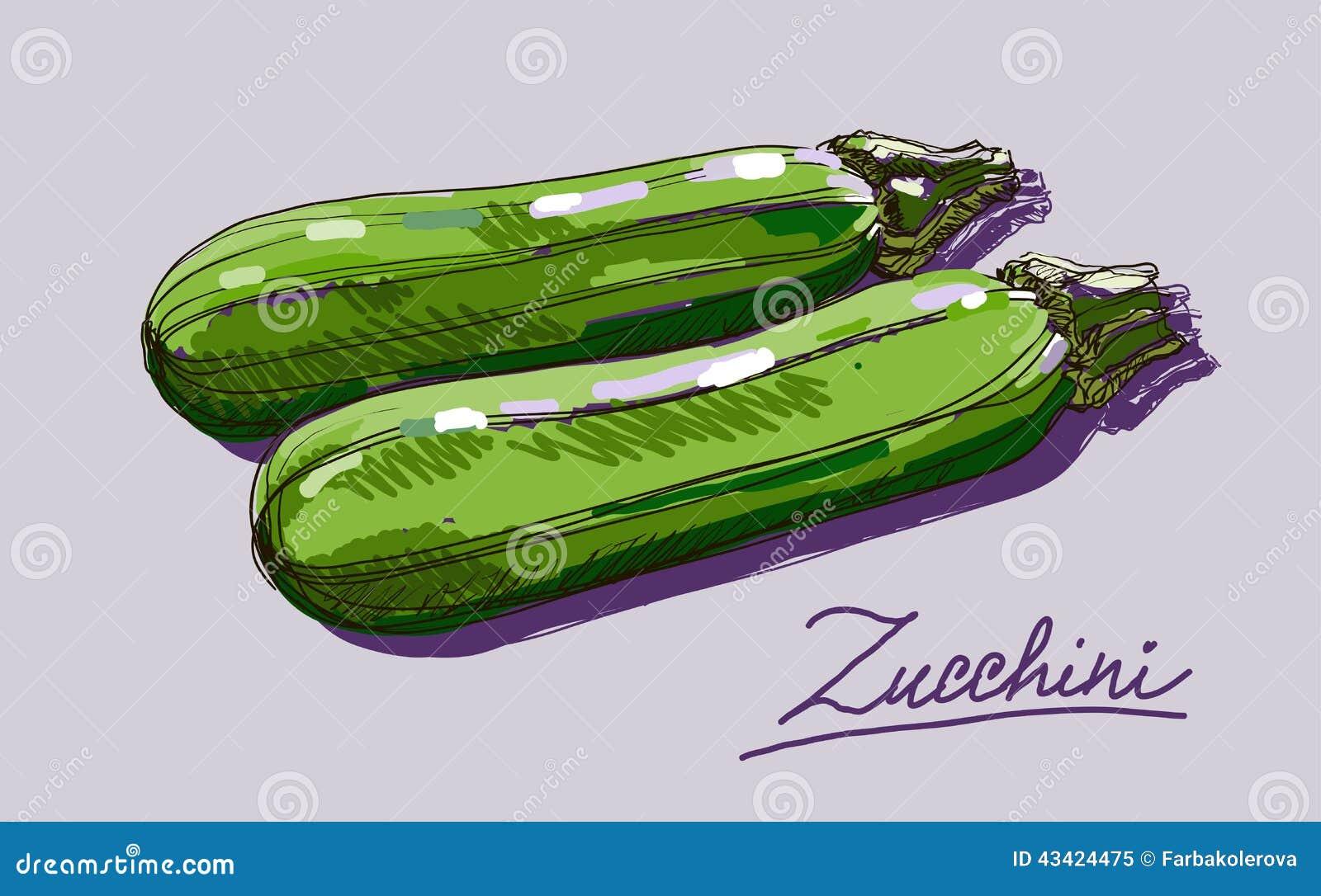 how to make zucchini grow big