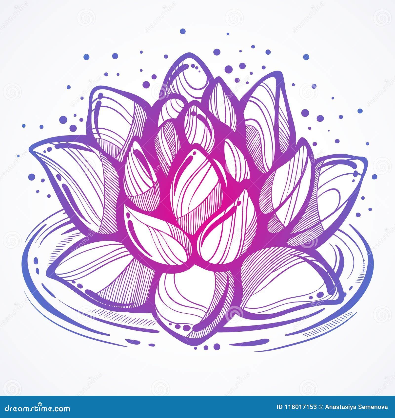 Vector hand drawn beautiful illustration of lotus flower on the download vector hand drawn beautiful illustration of lotus flower on the water high izmirmasajfo