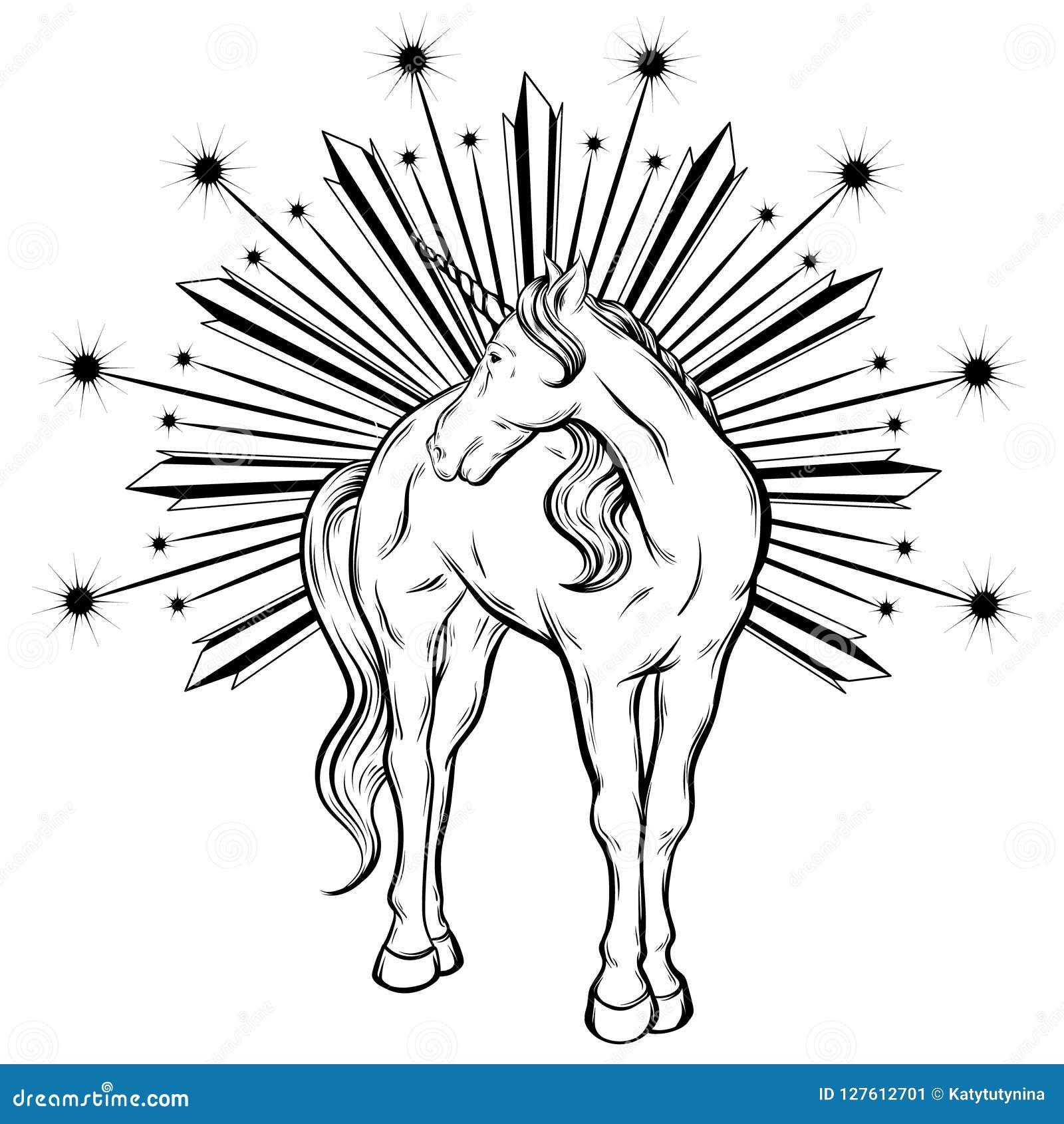 Vector Hand Drawn Illustration Of Unicorn Isolated   Stock