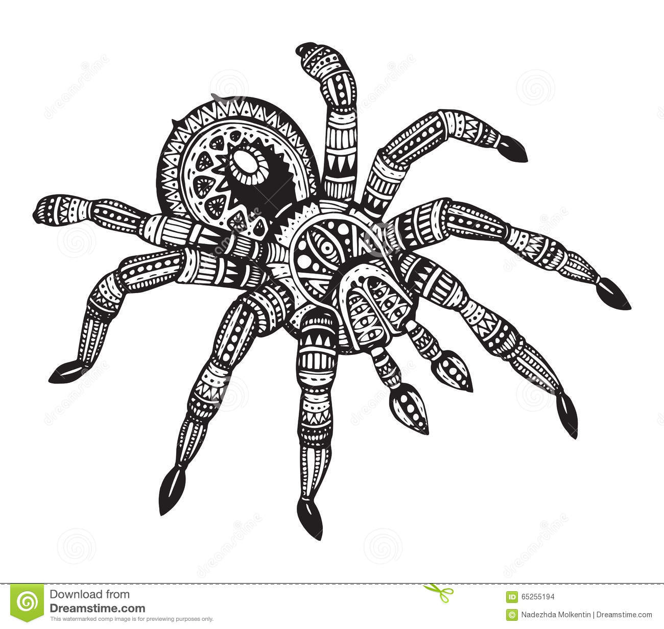 Gallery Giant Wolf Spider besides Greats Tribal Tatoo Designs 151 175 in addition Spider further Spider Diagrams To Print further Spider Web Coloring Pages. on tarantula spider