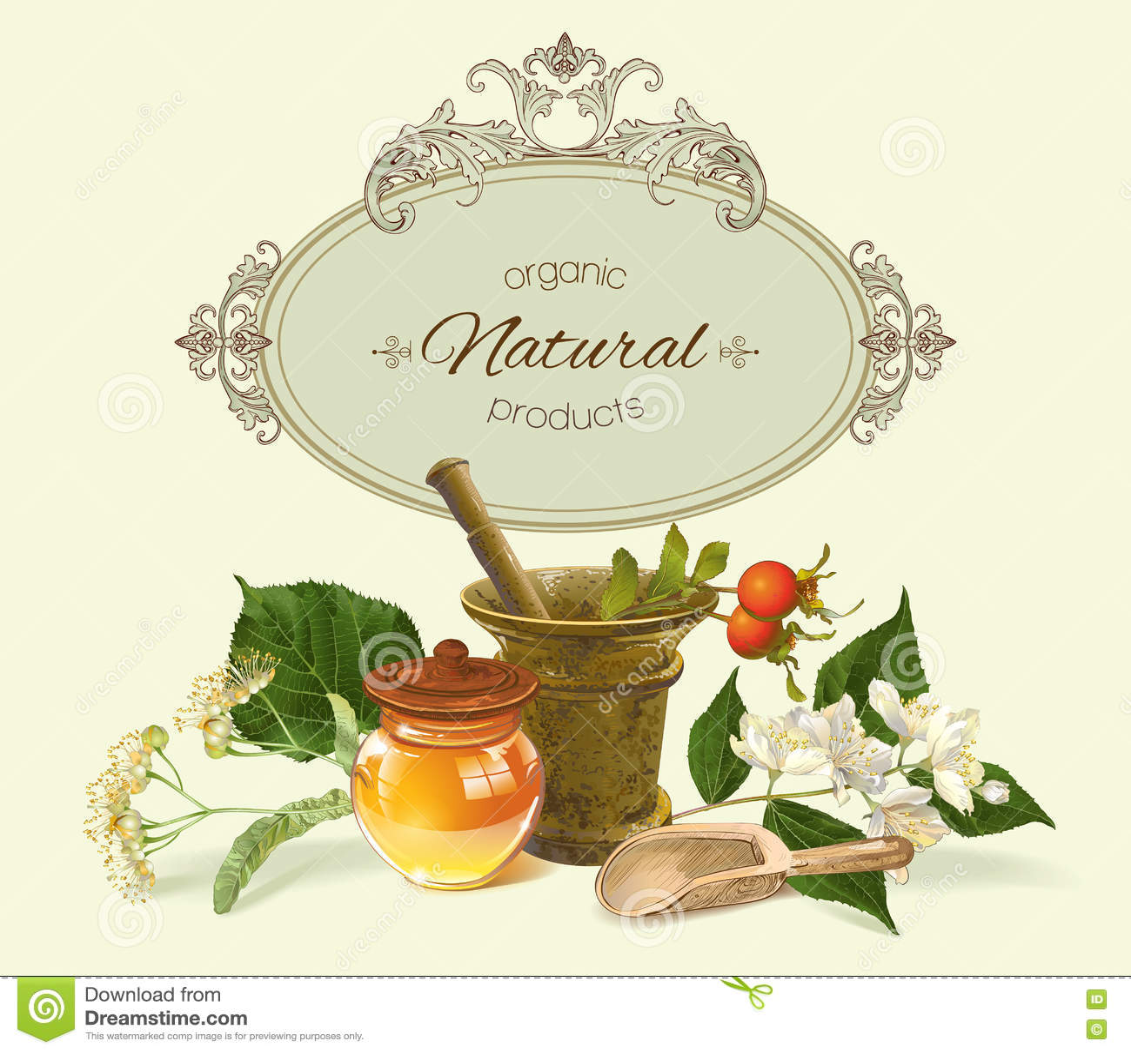 Vector Herbal Banner Illustration 75106802 Megapixl