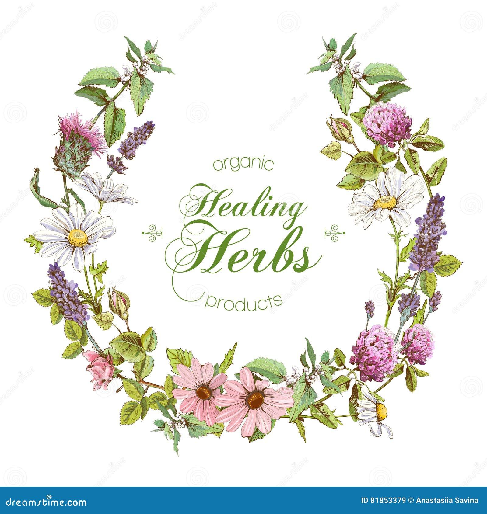 Herbal Cartoons, Ill