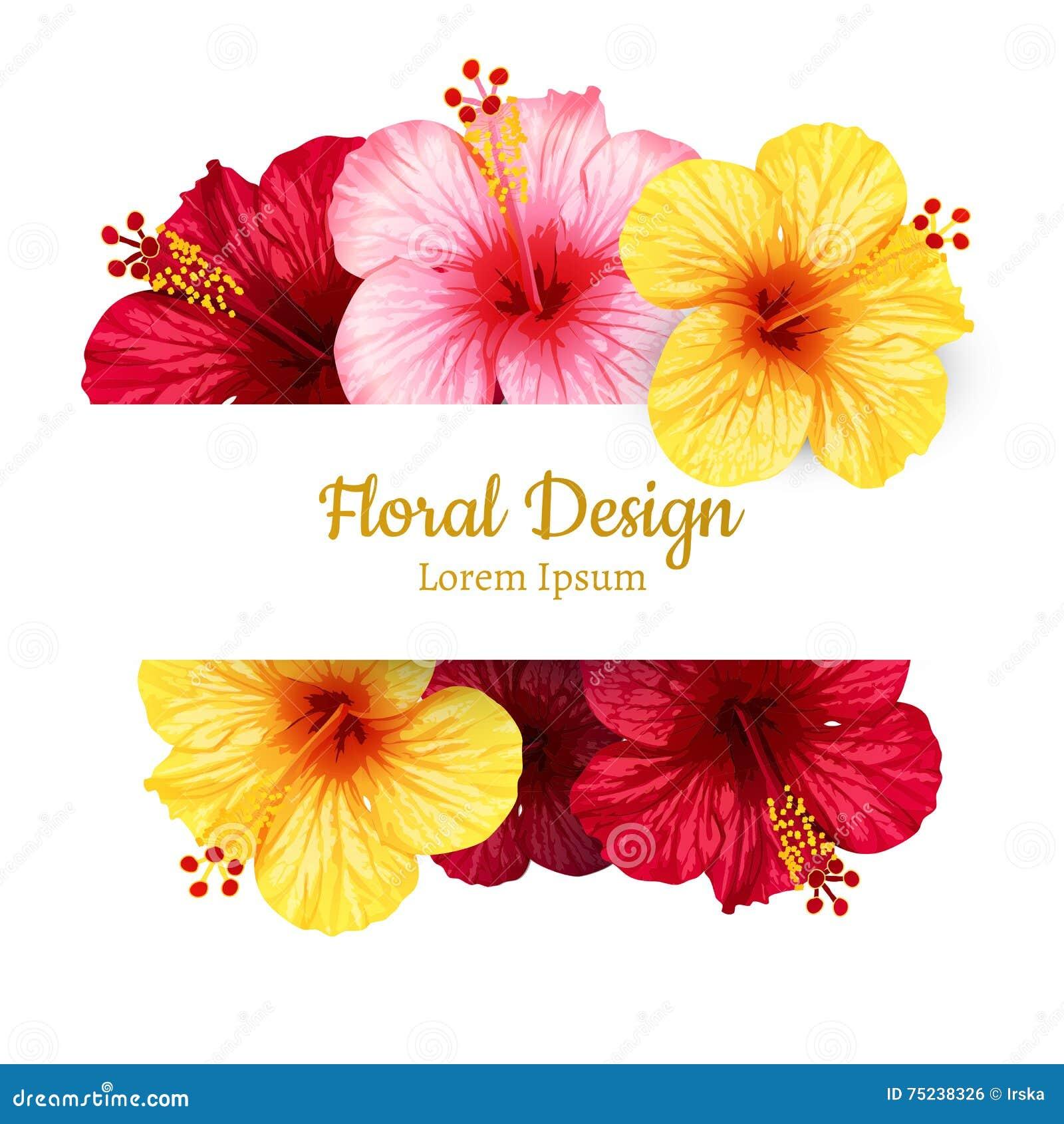 Vector Hibiscus Flower. Invitation Card. Stock Vector - Illustration ...