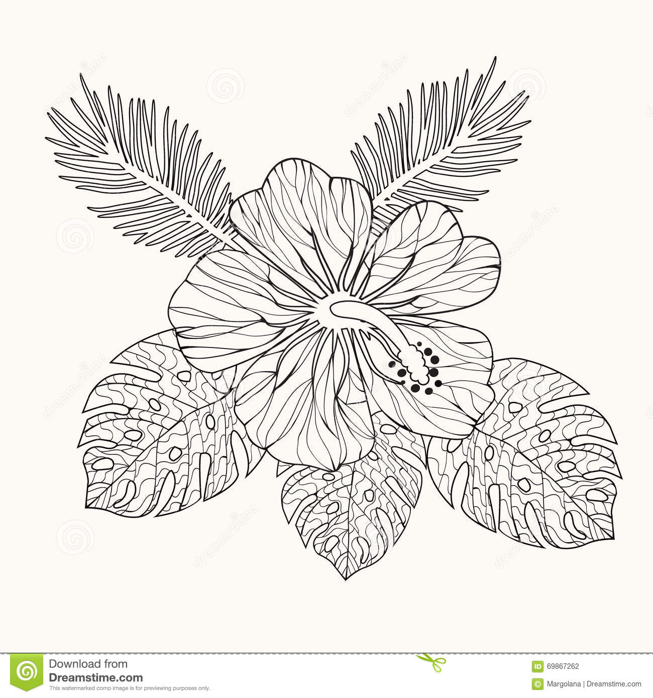 Vector Hibiscus Flower And Leaves Stock Vector Illustration Of