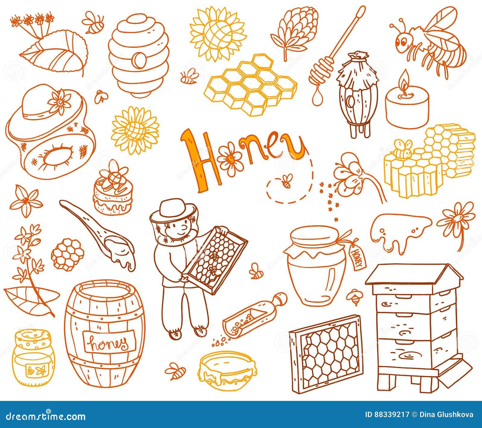 Vector honey element doodle set with beehive, beekeeper, flowers