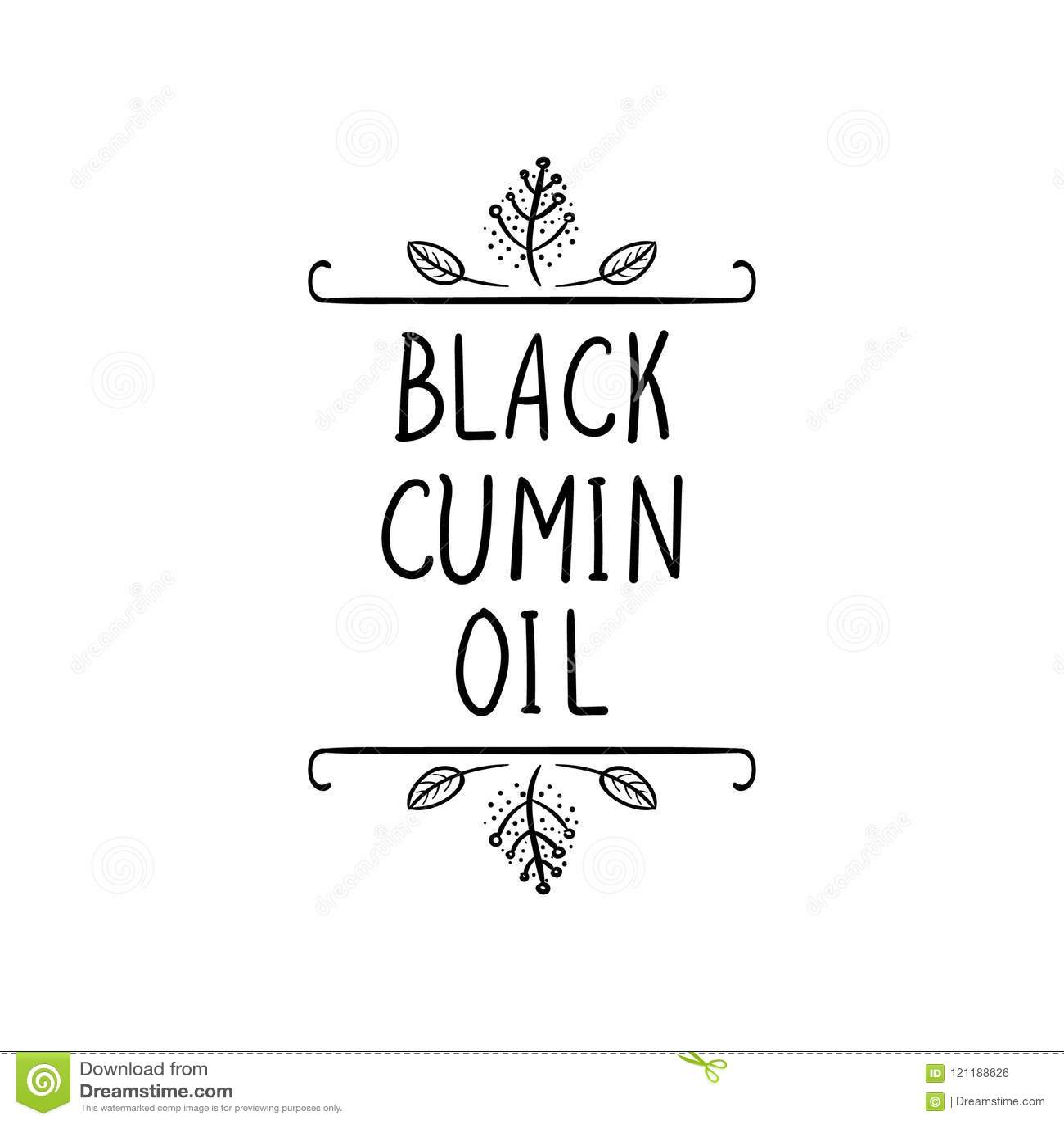 Vector, icono negro del aceite de comino, marco natural, dibujo negro y palabras, plantilla de empaquetado de la etiqueta, líneas