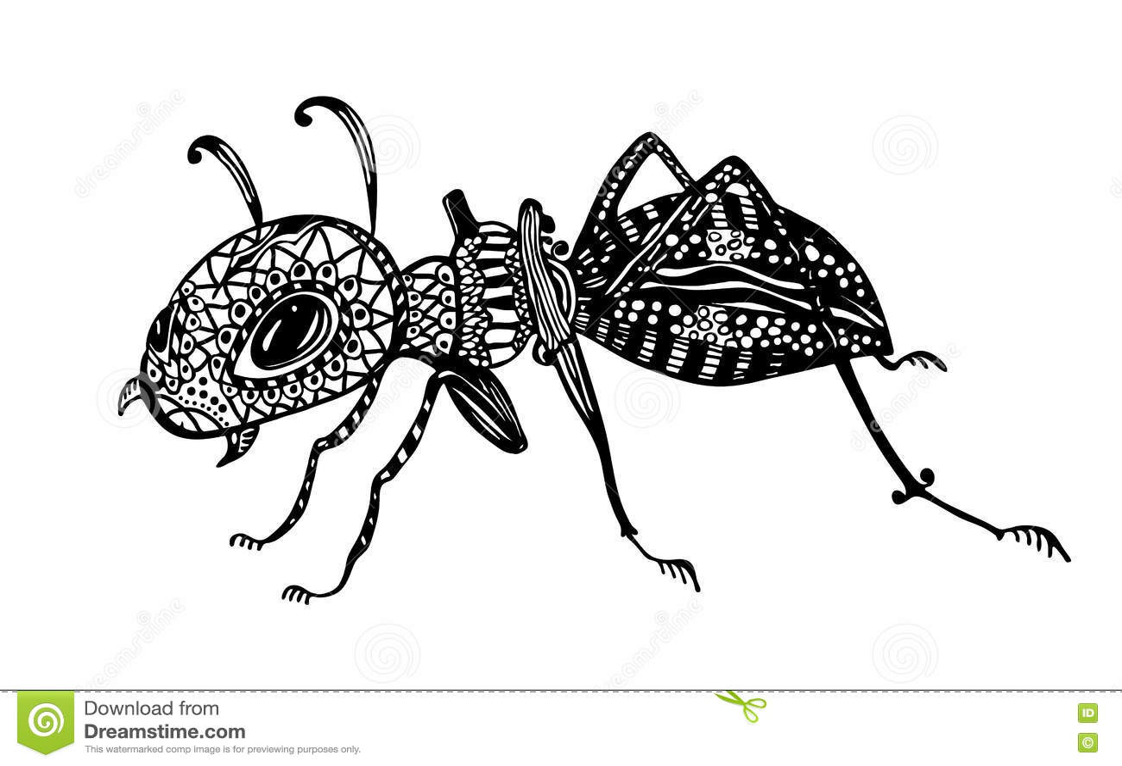 vector illustration ant line art doodle art coloring