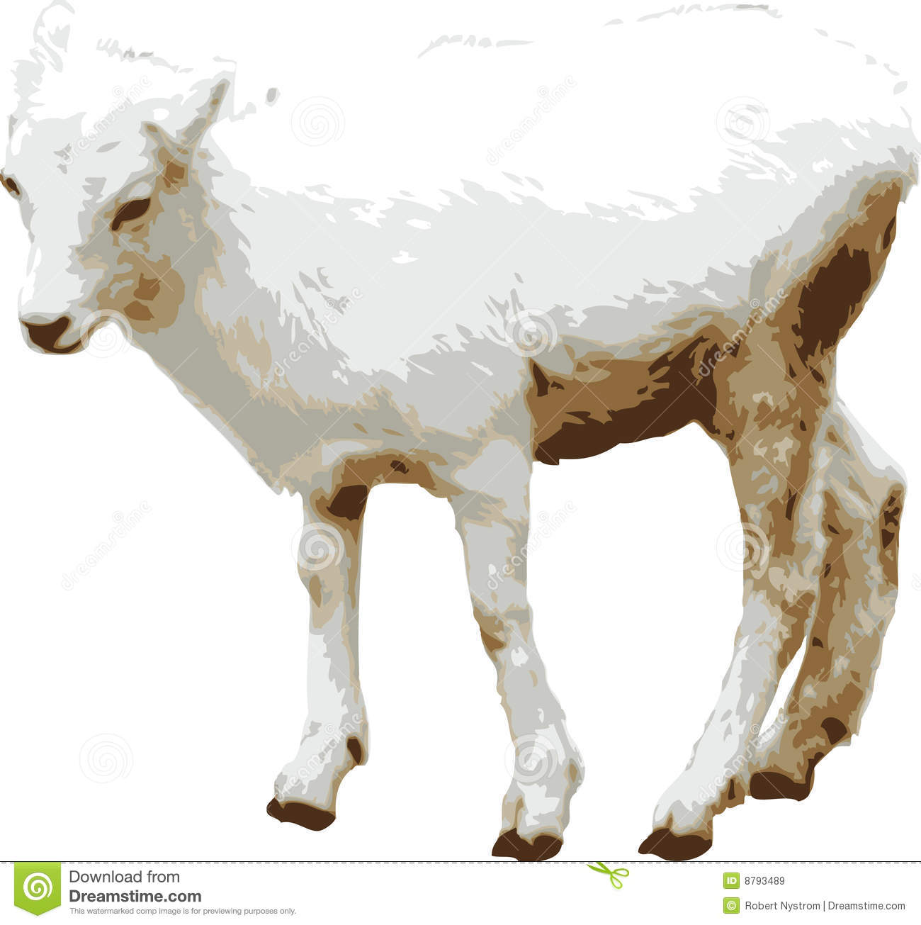 Vector Illustration Of Baby Goat Stock Vector Image 8793489