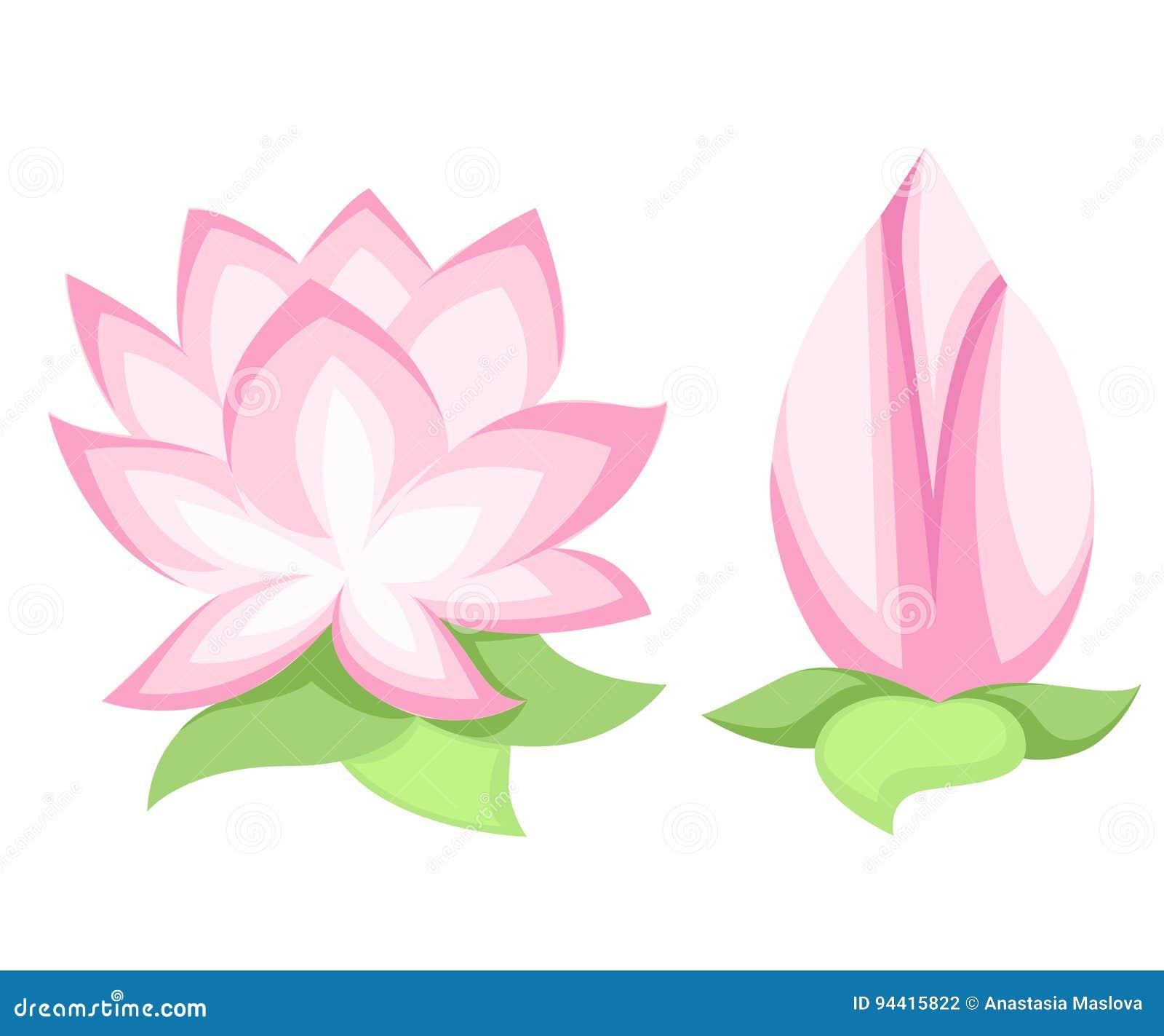 Vector illustration beautiful pink lotus flower isolated on white vector illustration beautiful pink lotus flower isolated on white background stylish floral spring wallpaper greeting or invitation card izmirmasajfo