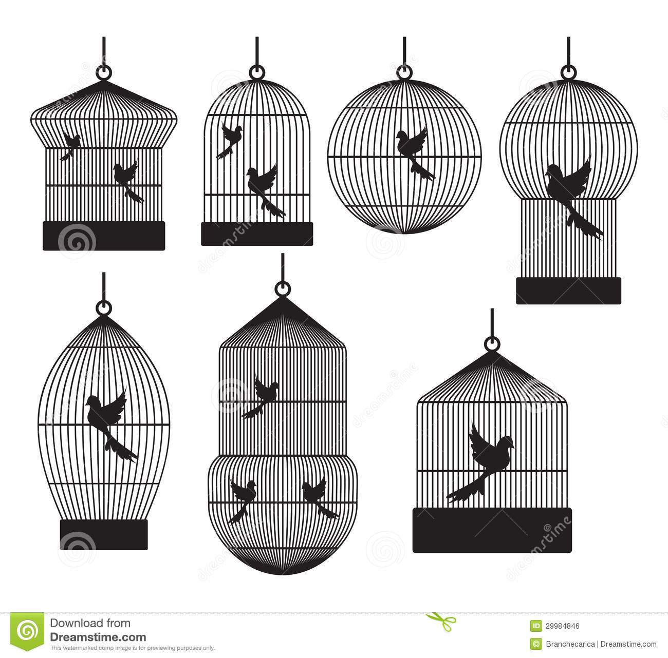 Bird Cages Stock Vector Image Of Object Confined Head