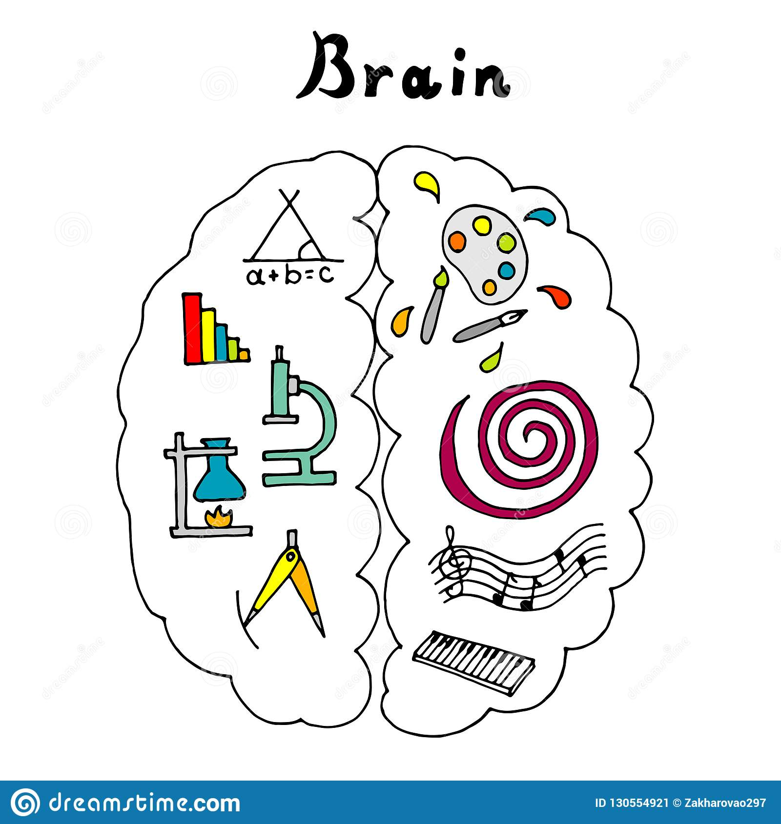 Vector Illustration Of The Brain. Left And Right ...