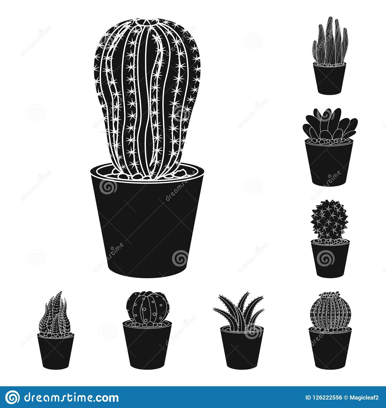 Vector Illustration Of Cactus And Pot Icon Collection Of Cactus And