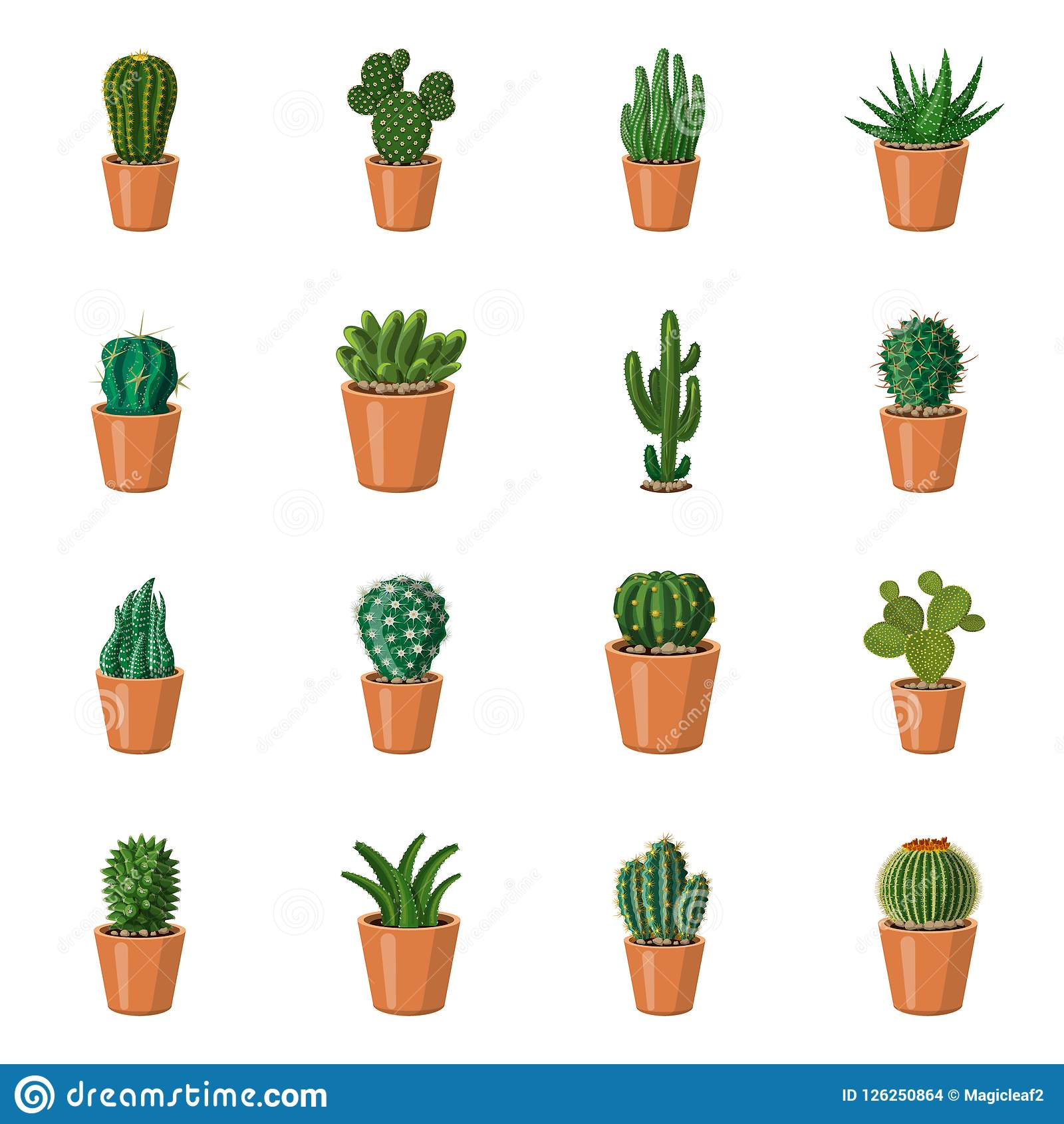 Vector Illustration Of Cactus And Pot Sign Set Of Cactus And Cacti