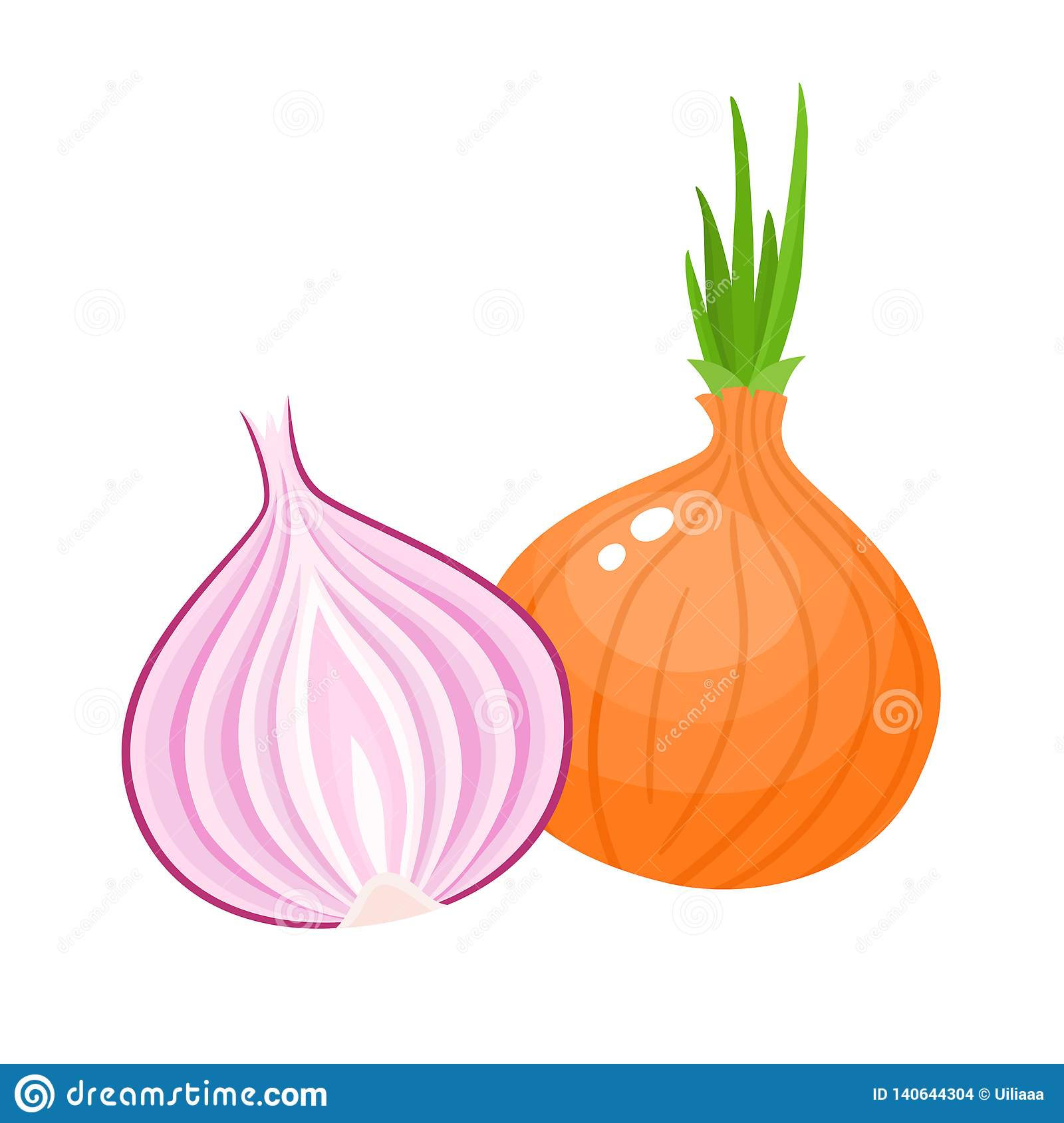 Vector Illustration Of Cartoon Red, Yellow Onion Isolated ...