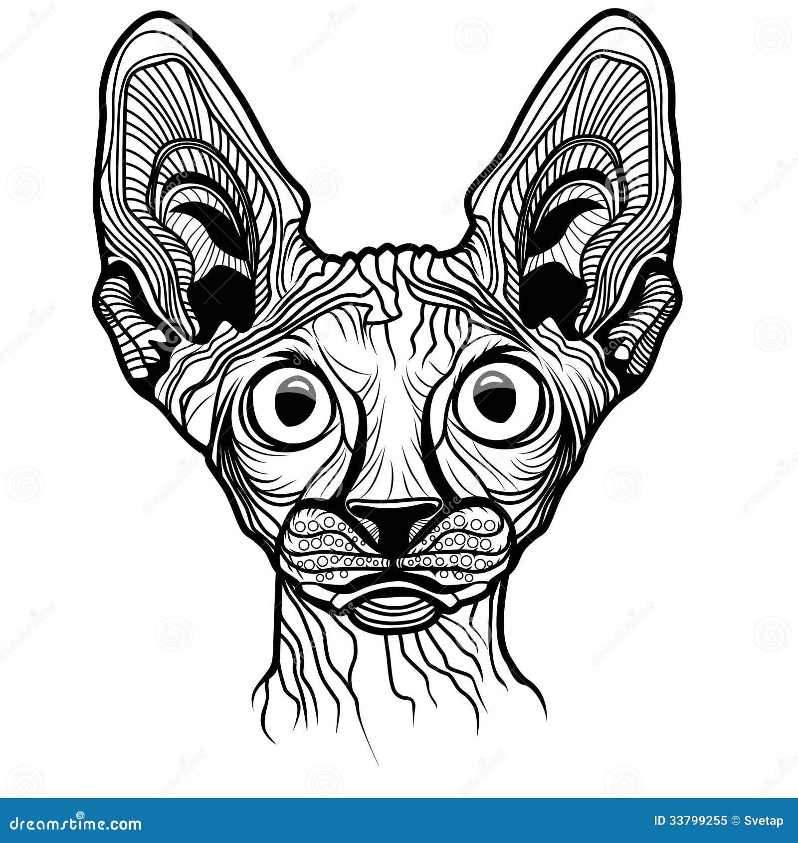 Vector Illustration Of Cat Head Royalty Free Stock Photo Image 33799255