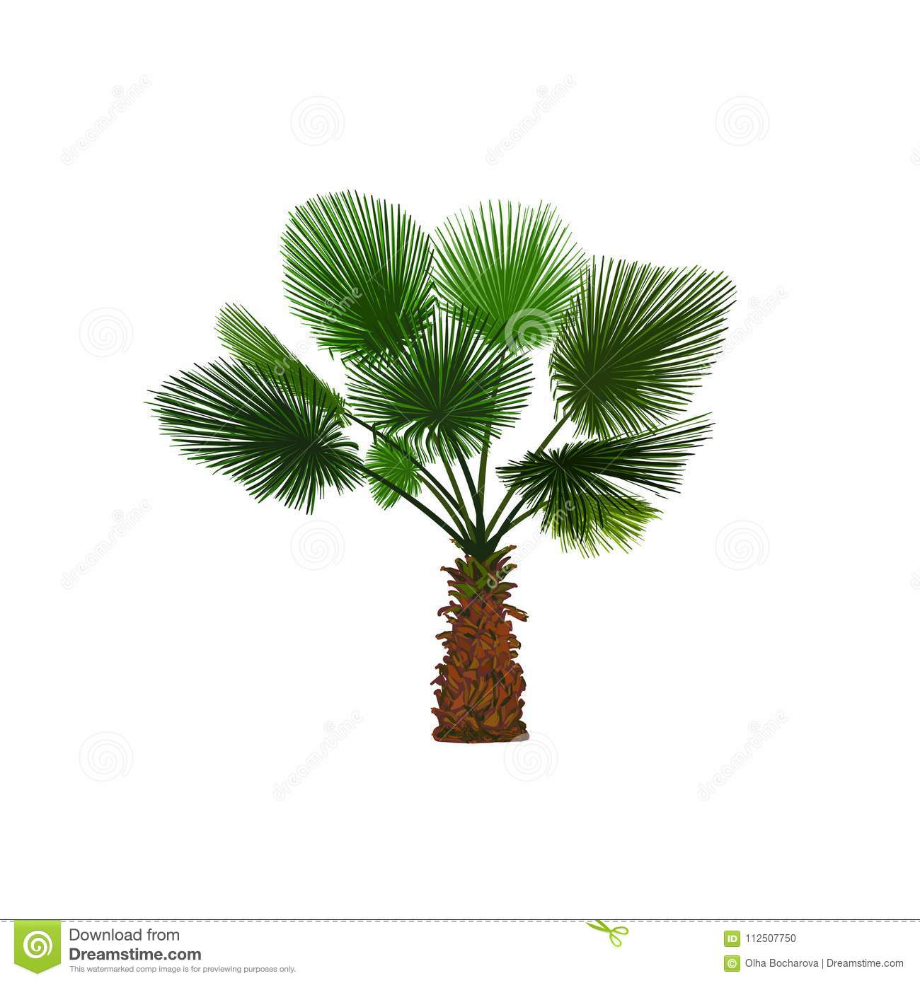 Vector Illustration Of Color Fun Palm. Tropical Palm Tree Stock ...