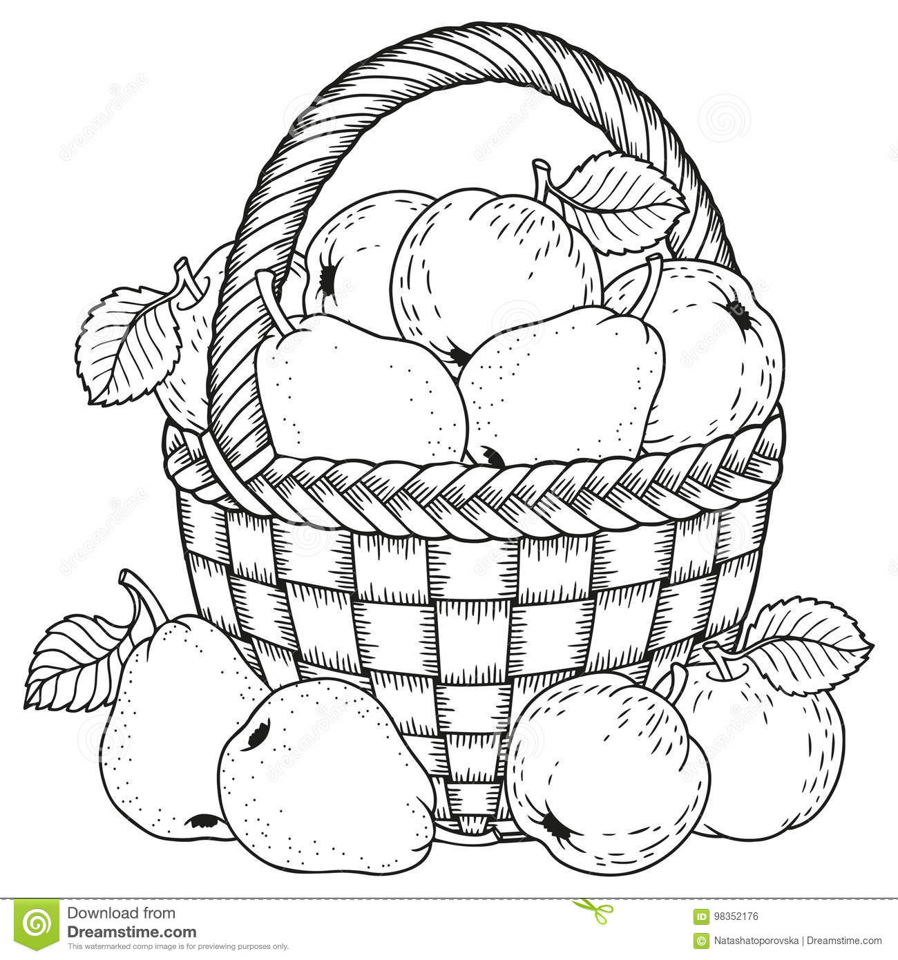 Vector Illustration For Coloring Thanksgiving Day Harvest Of