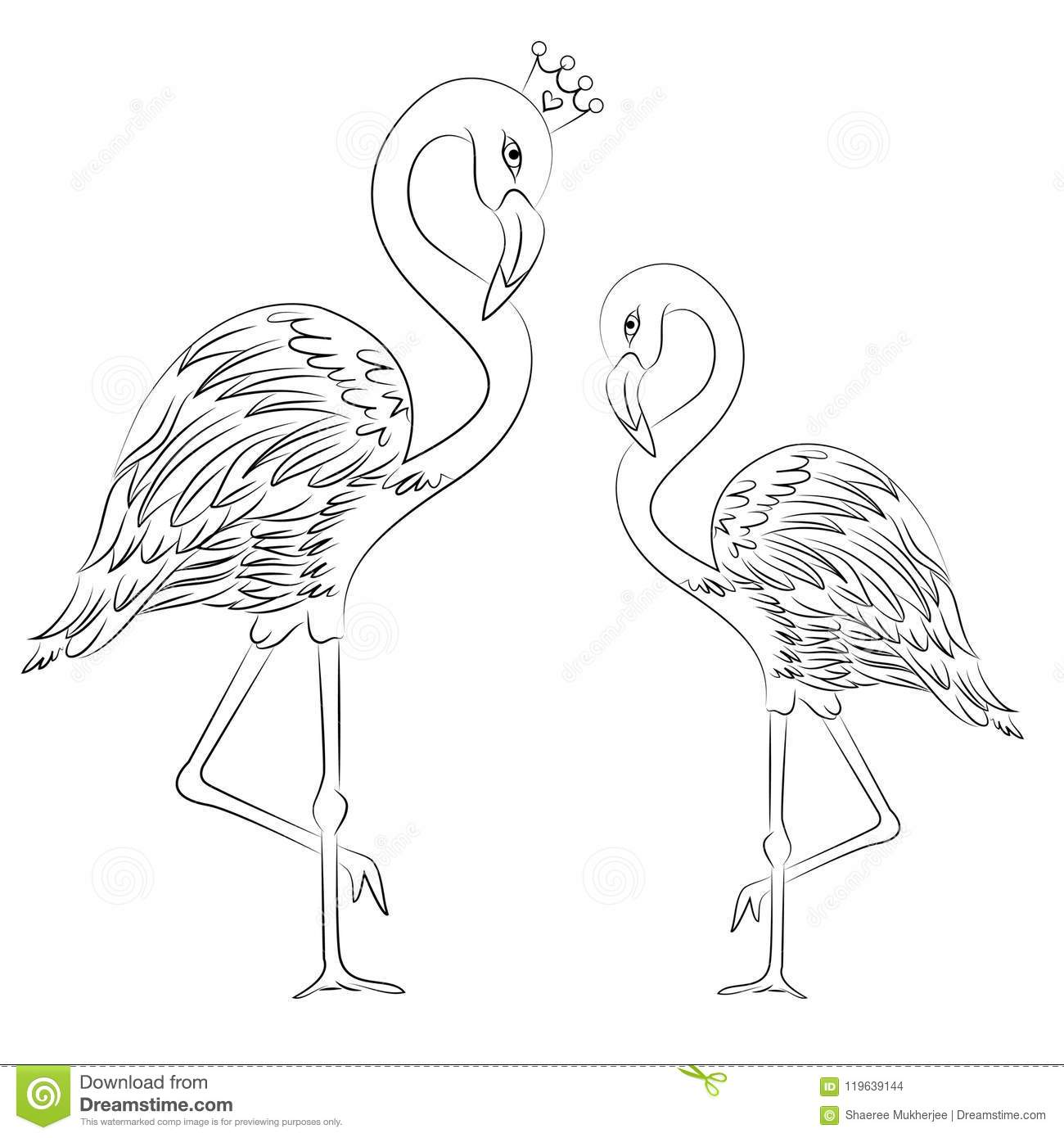 Vector Illustration Flamingos Coloring Page Stock Illustration