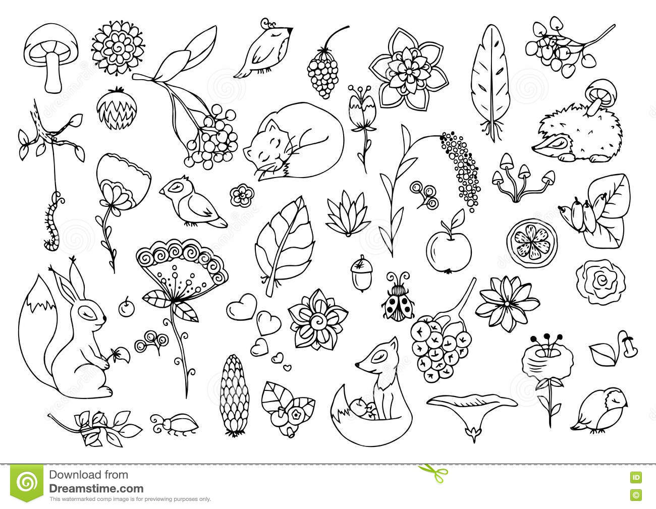 Vector Illustration E Set The Forest Animals And Flowers