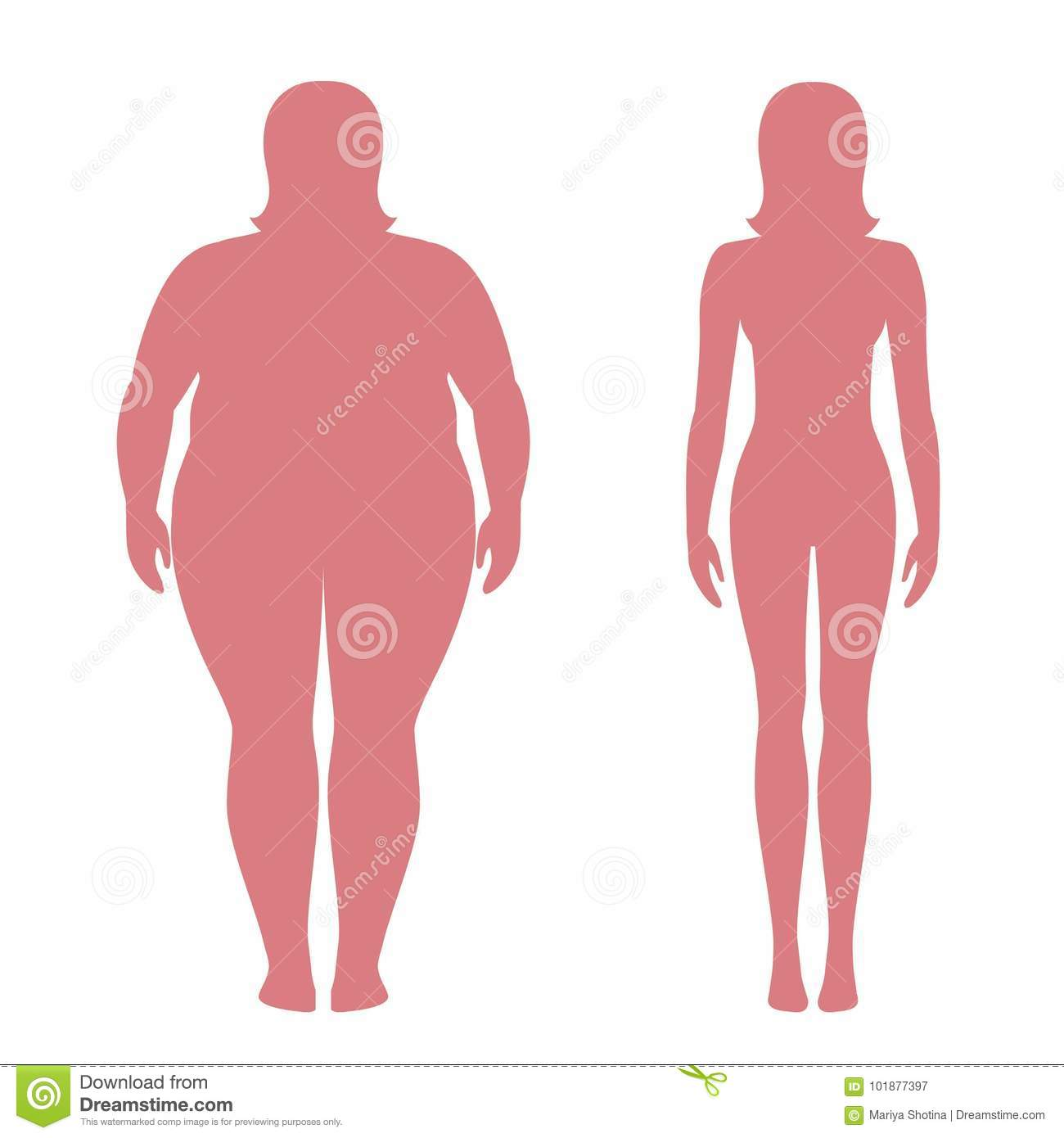 Vector Illustration Of Fat And Slim Woman Silhouettes. Weight Loss ...