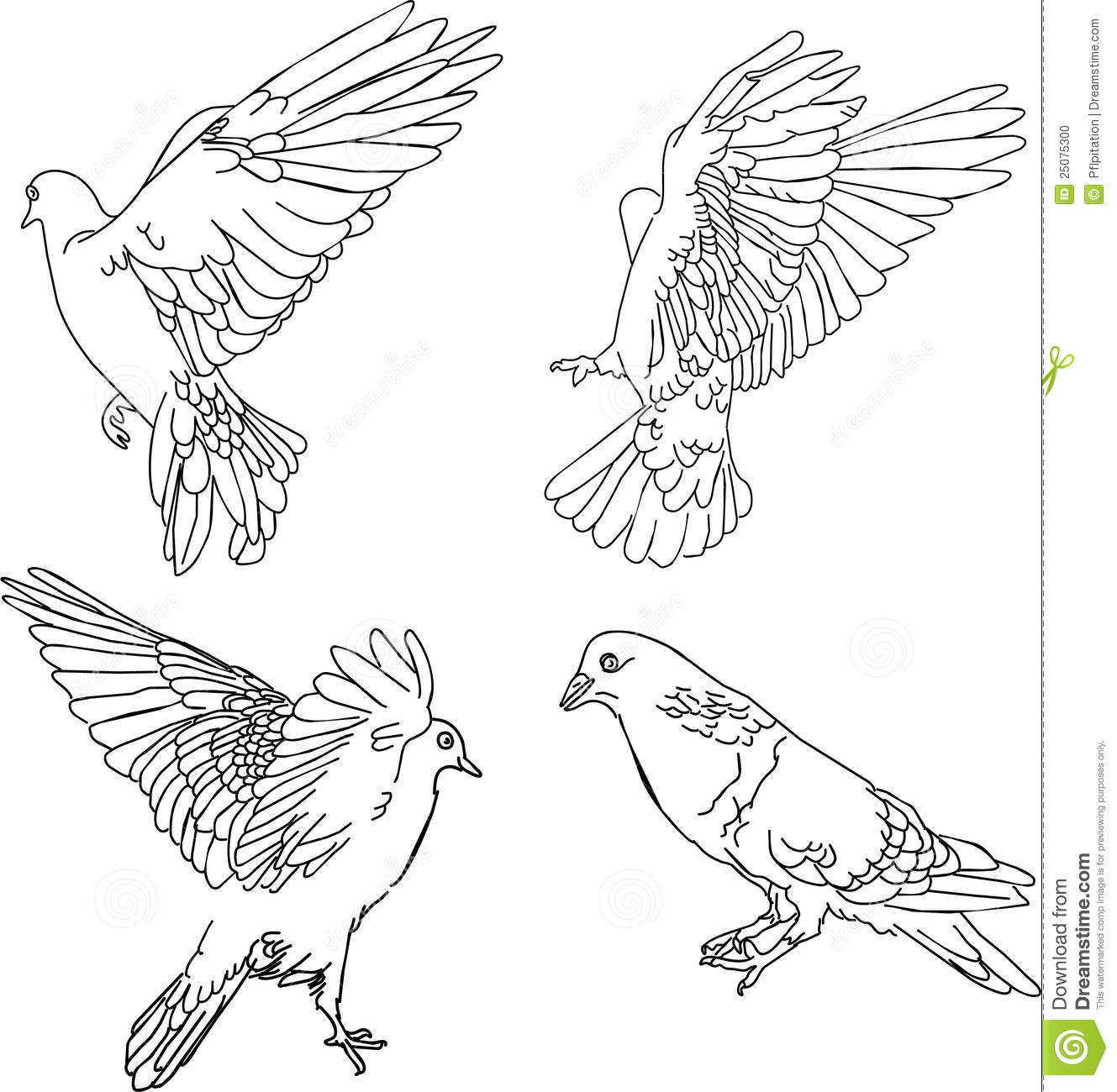 vector illustration four doves stock photo image 25075300