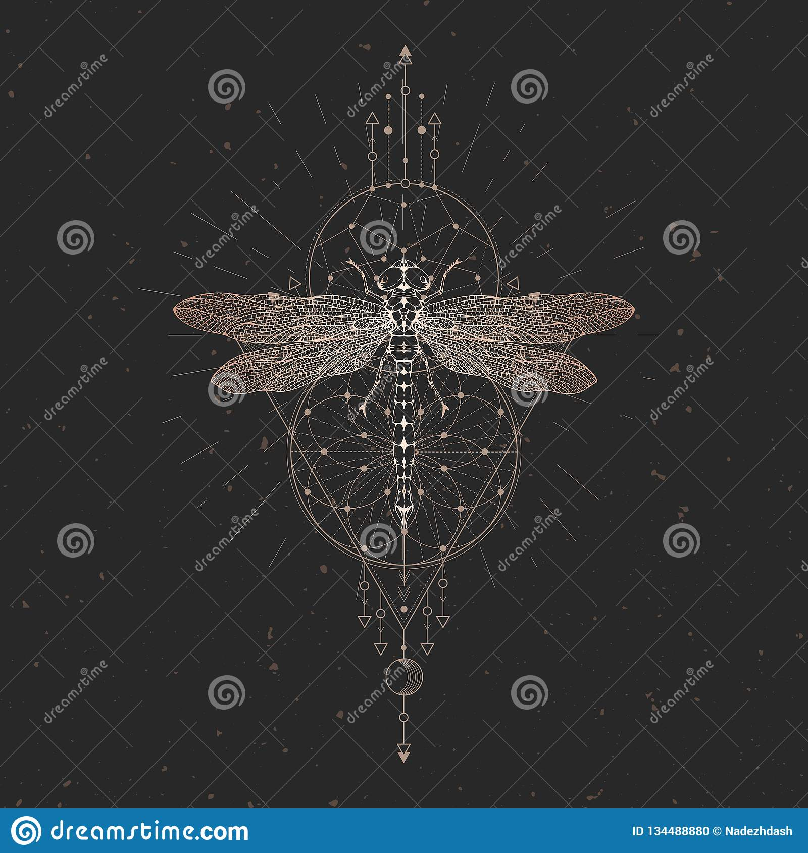 Vector illustration with hand drawn dragonfly and Sacred geometric symbol on black vintage background. Abstract mystic sign. Gold
