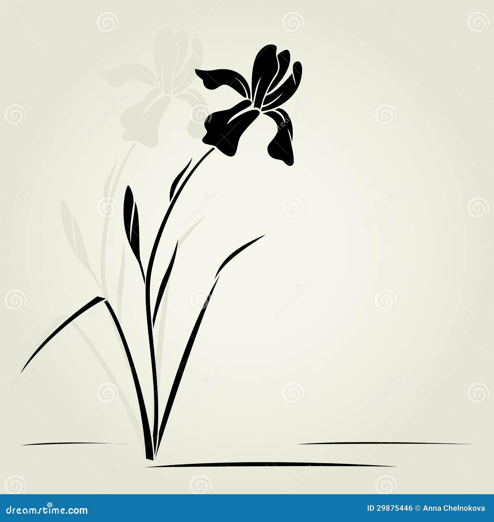 Vector iris flower stock vector illustration of nature 29875446 vector iris flower izmirmasajfo Images
