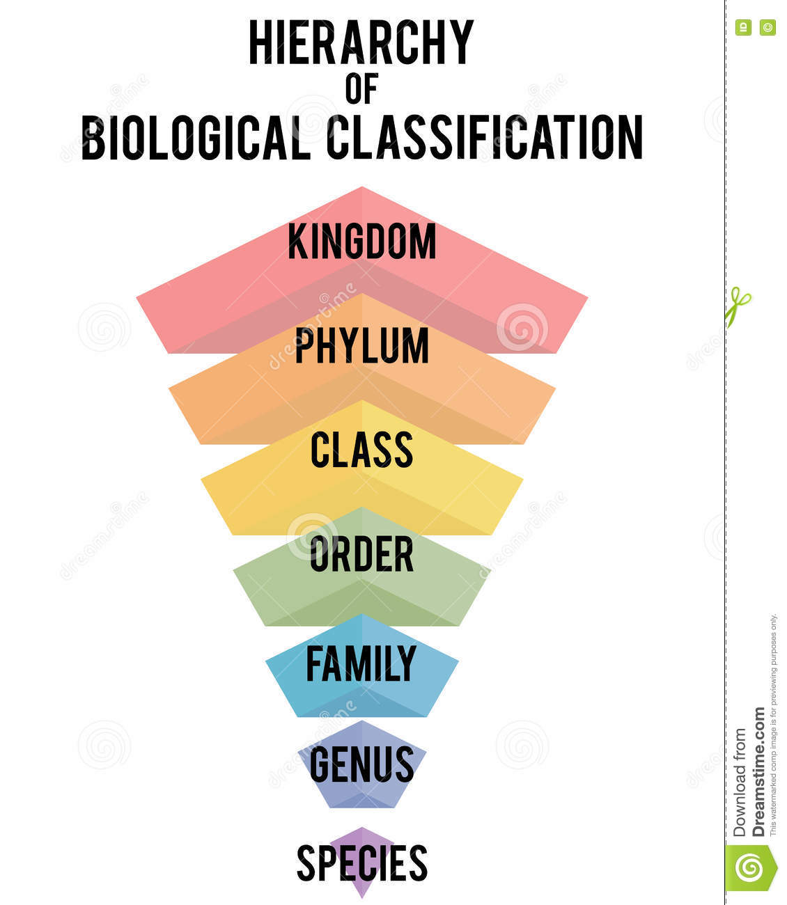 biological classification These video classes cover biological classification, biological classification  system, kingdom monera characters, bacteria life processes, economic.