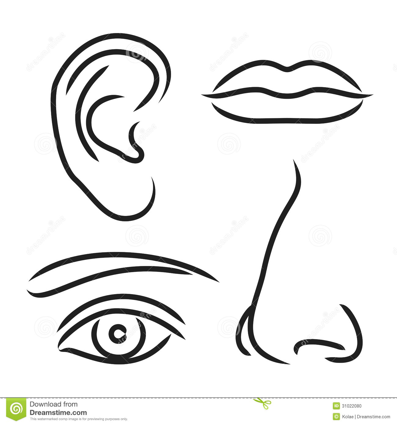 Black Eye and Ear Clip Art