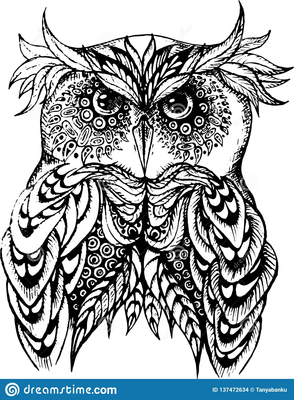 Vector illustration of owl in black and white.