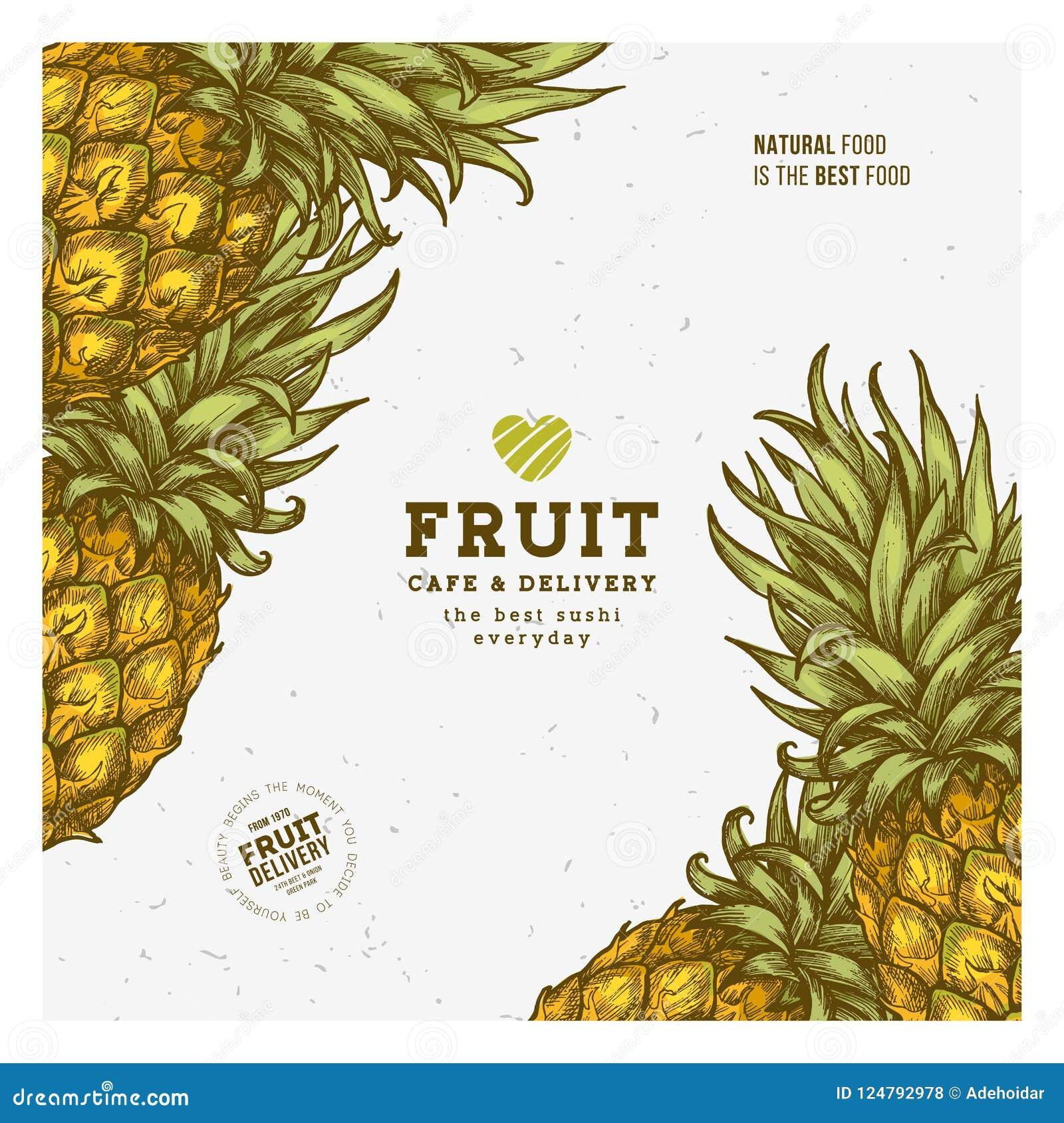 pineapple fruit vintage design template botanical fruit engraved