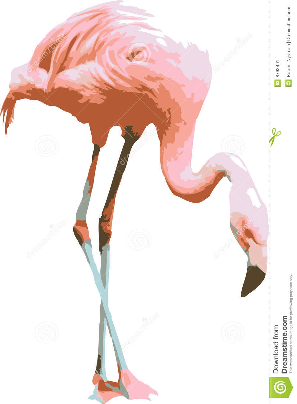 vector illustration of a pink flamingo stock image image flamingo clip art pictures flaming clipart