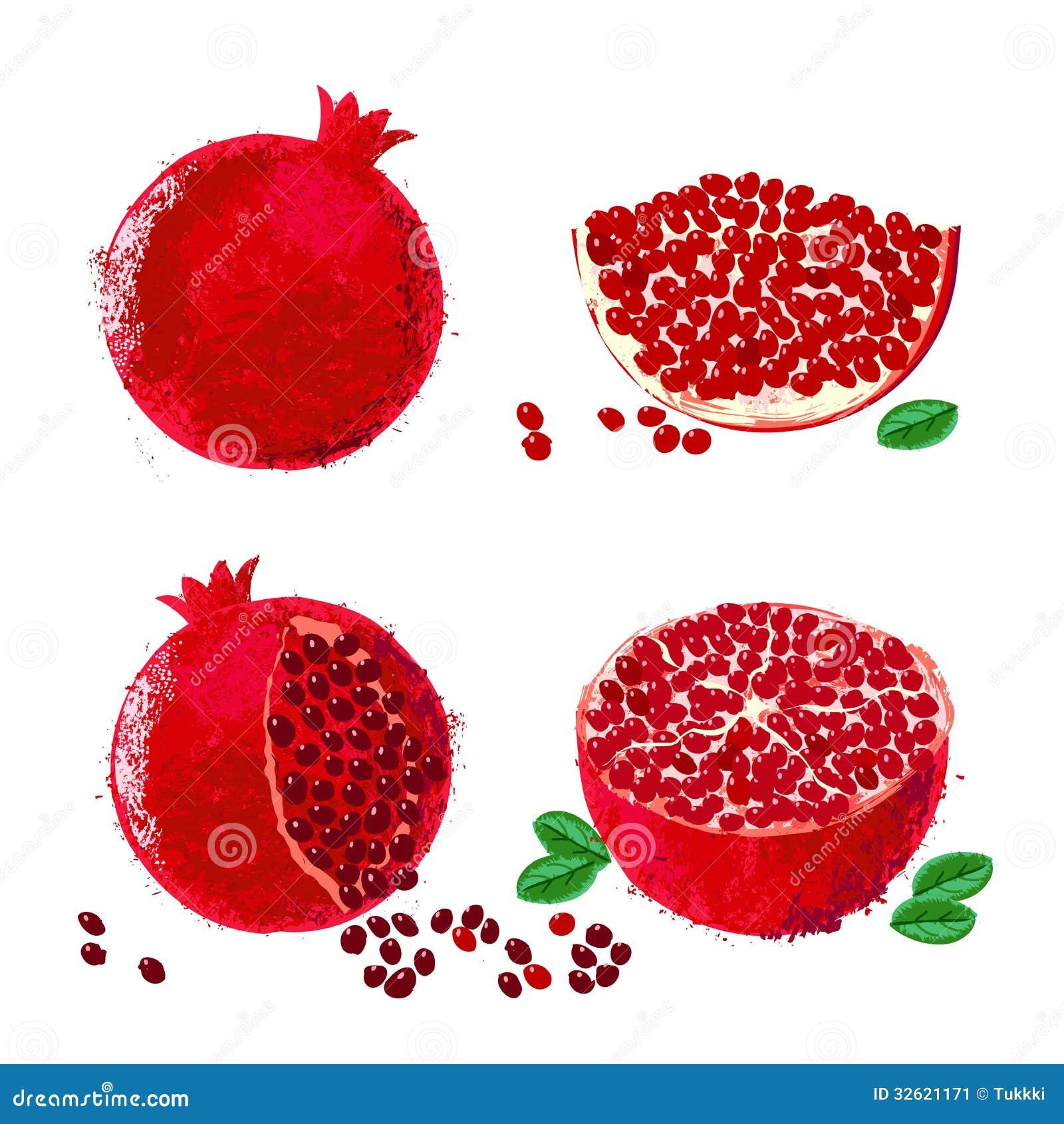 Vector Illustration Of Pomegranate Fruits Stock Image