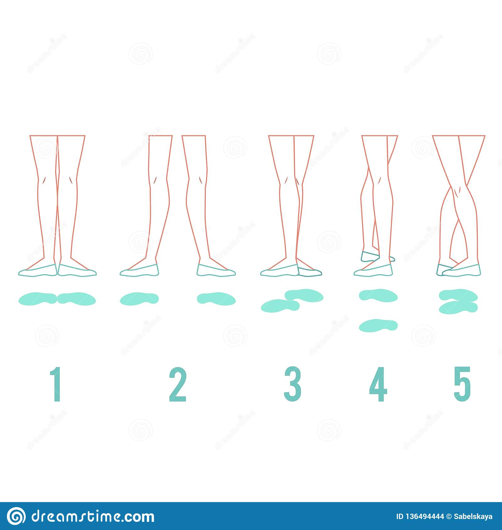 03288edec3826 Vector illustration set of ballerina feet in pointe shoes standing in five  classical ballet positions.