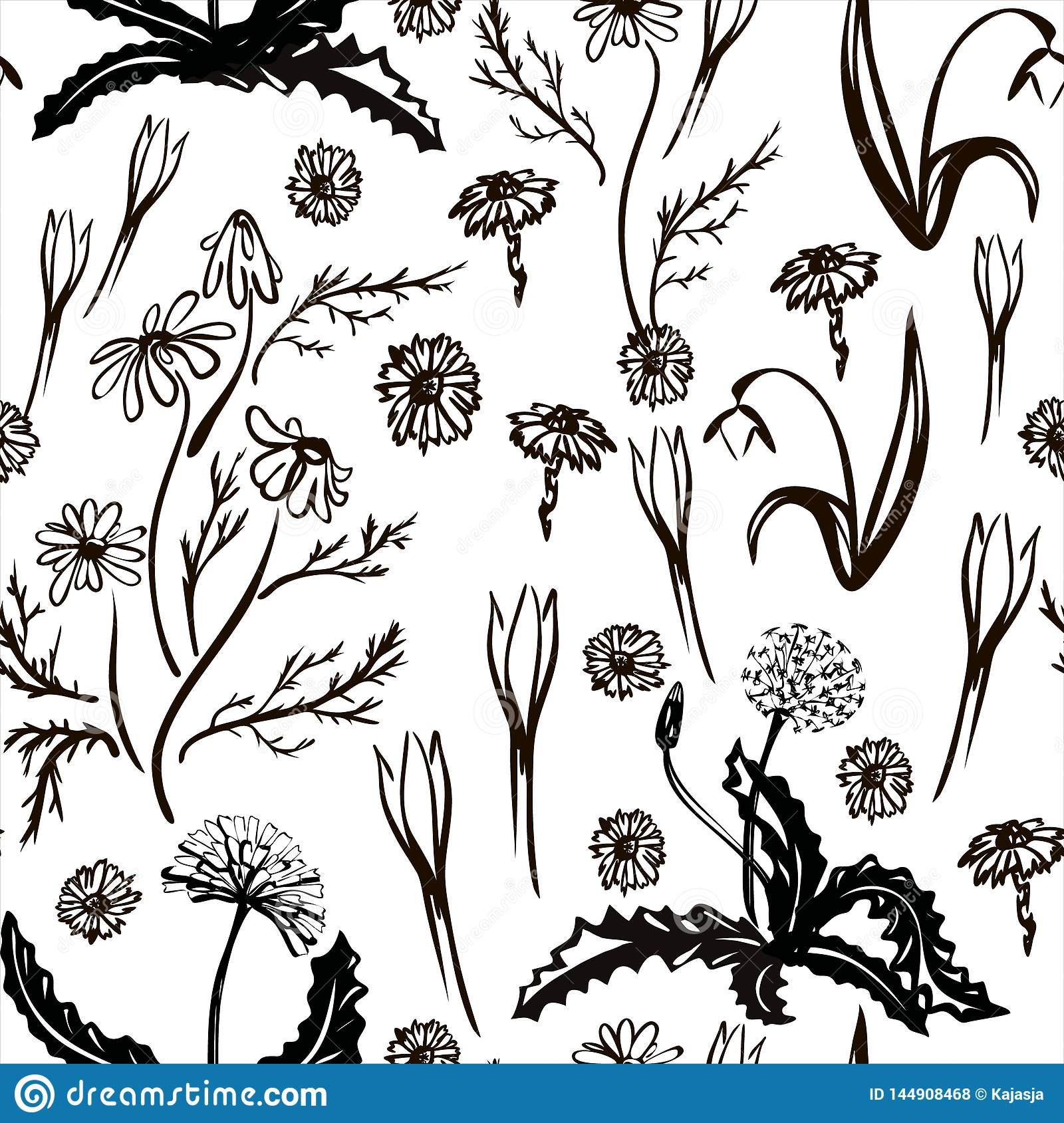 Vector illustration. Spring set drawn in black line. The first spring flowers. Image for your decor and design.