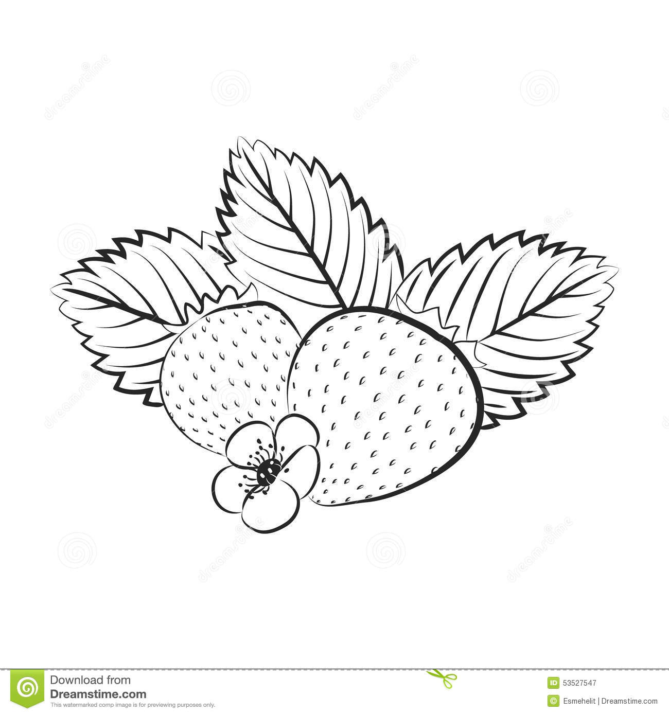 Vector Illustration Of Strawberry Surrounded With Leaves ...
