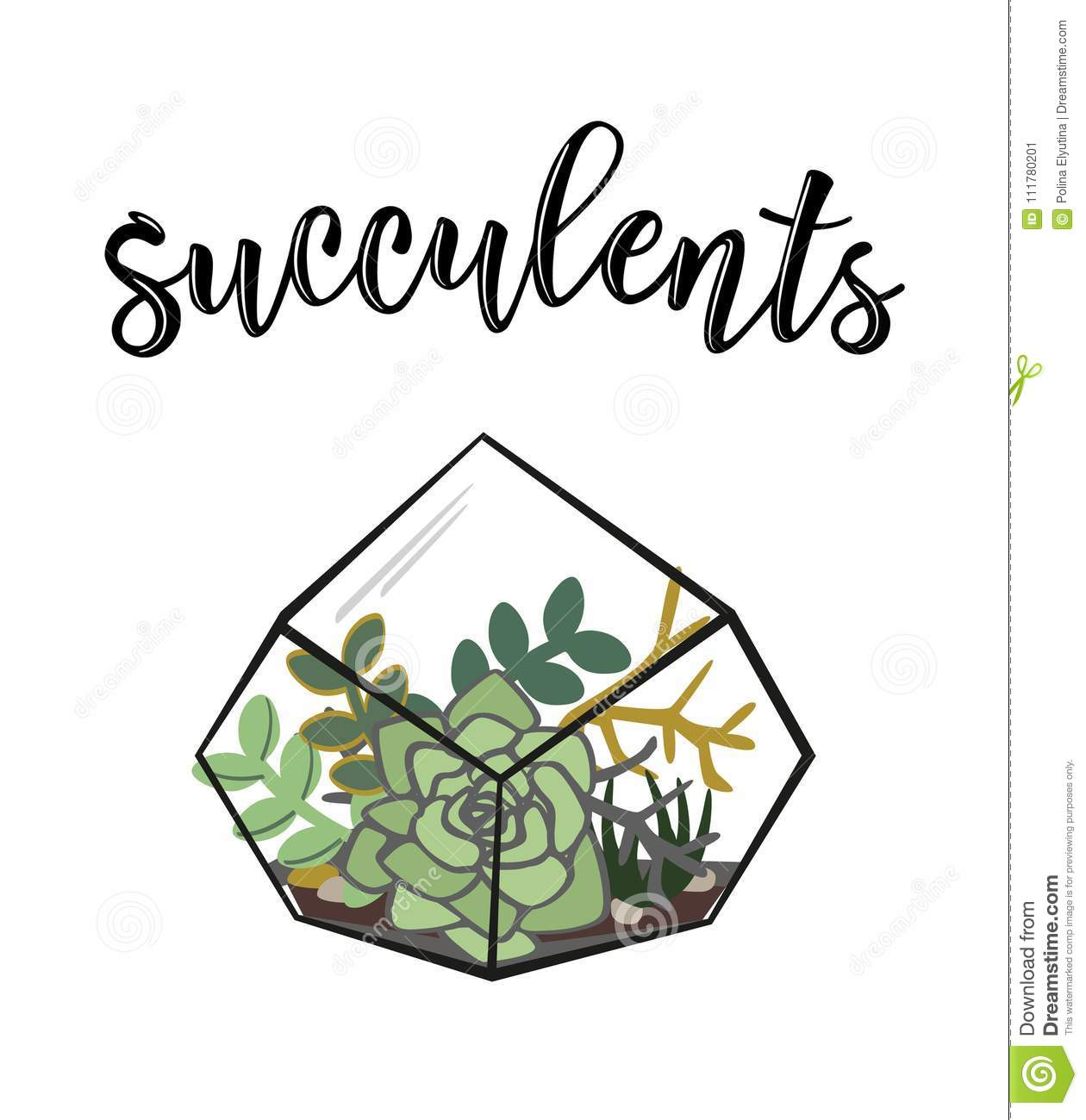 Vector illustration of a `Succulents` poster