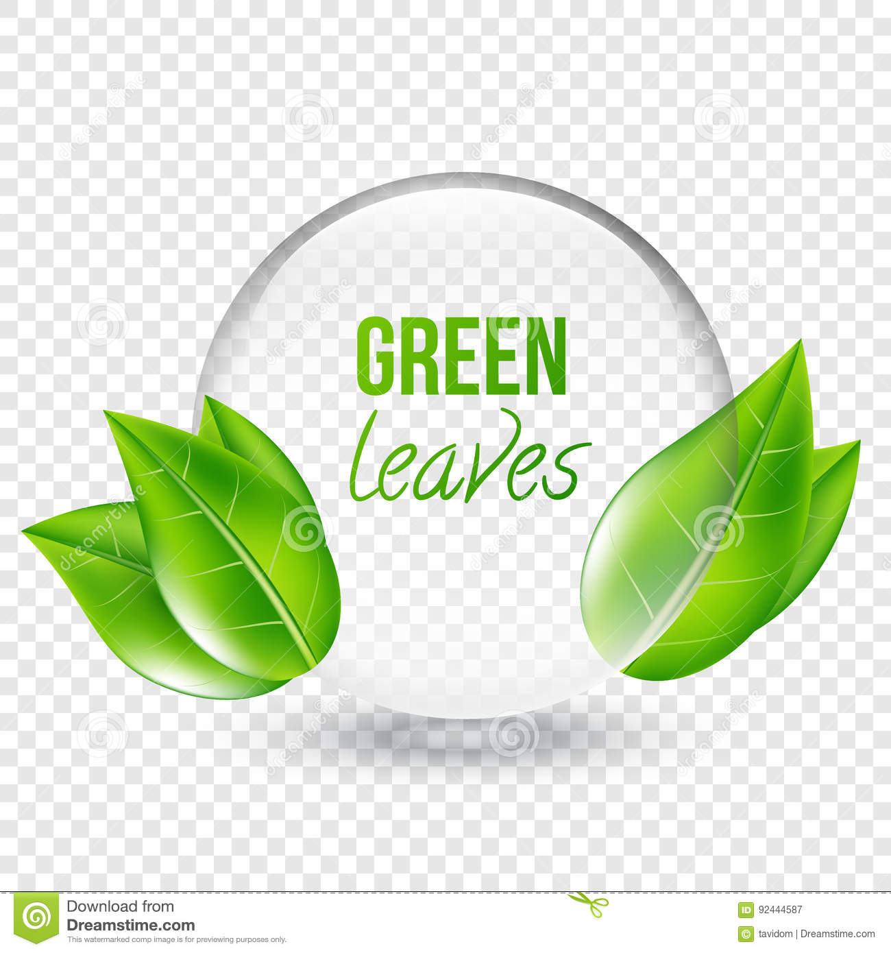 Transparent Shere With Green Leaves For Design Business Cards Vector Illustration On Background