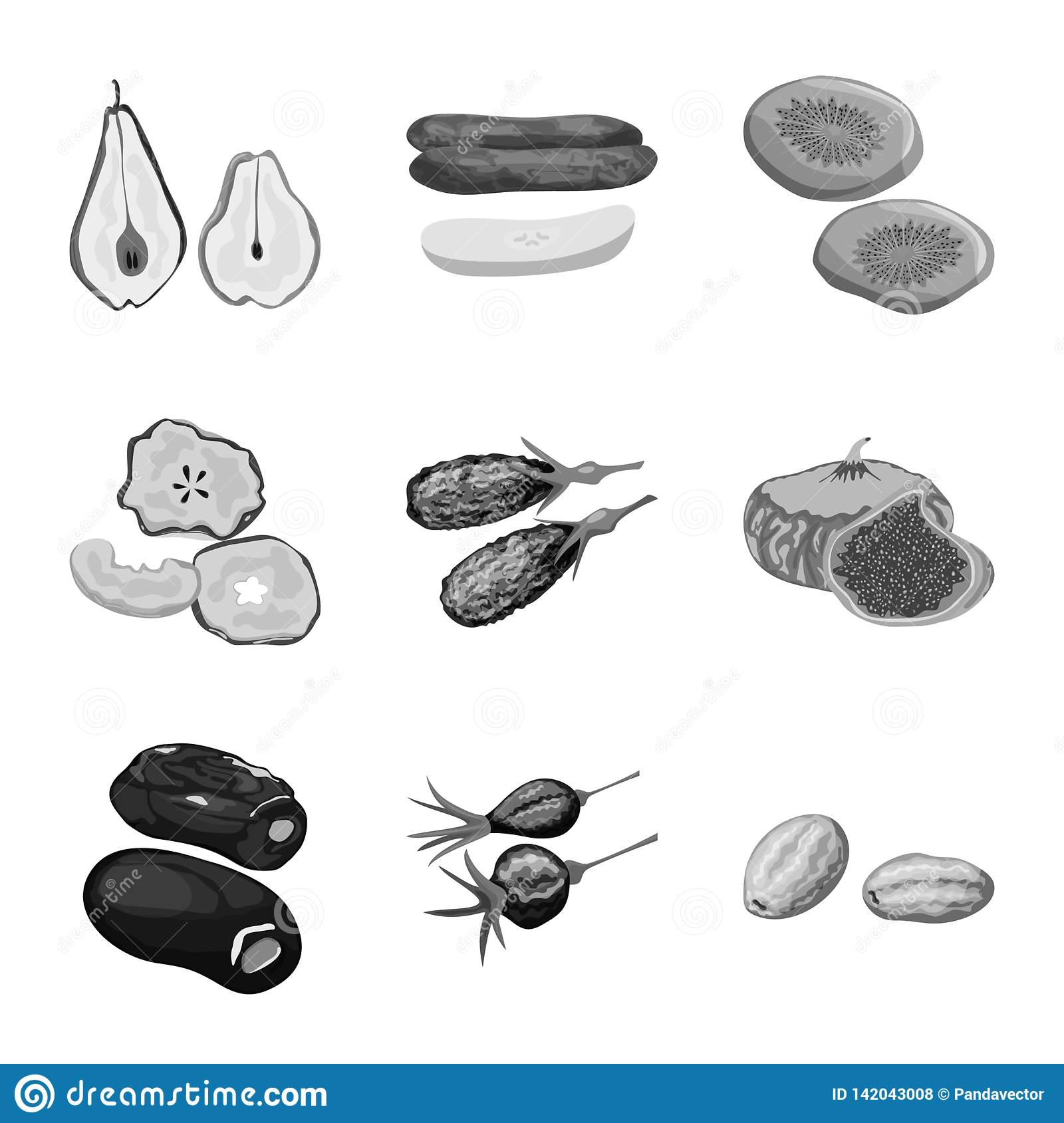 Vector illustration of vitamin and nature icon. Collection of vitamin and dried stock vector illustration.