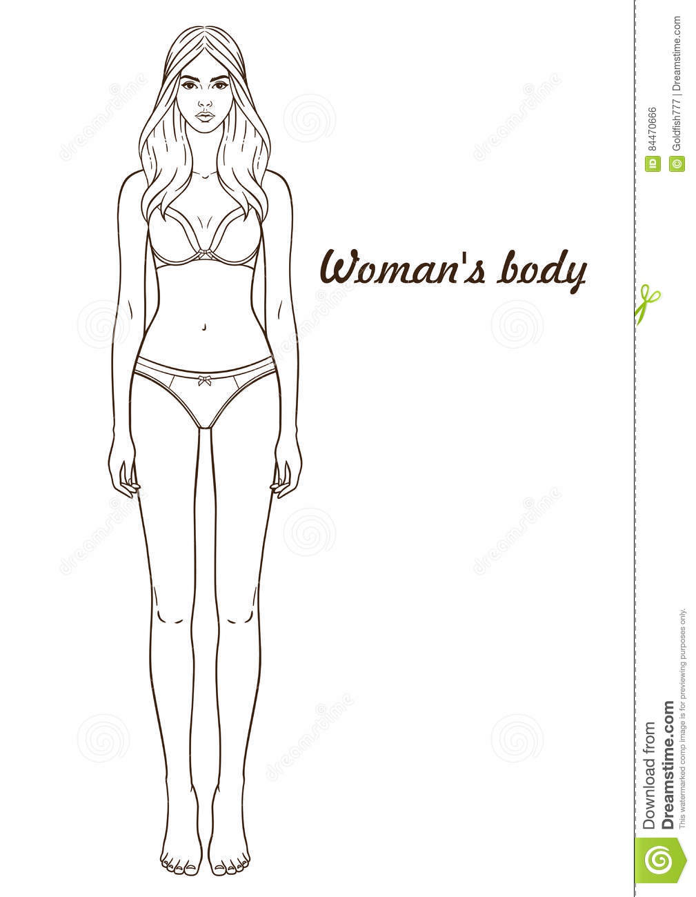 vector illustration of womans body stock vector image With paper doll template woman