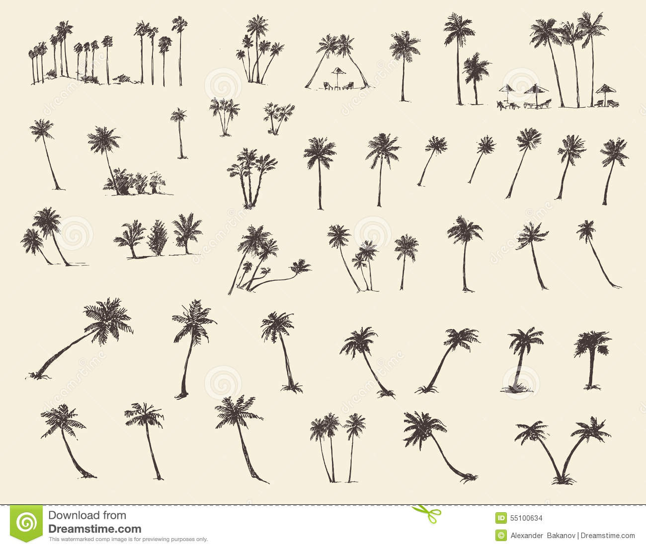How To Draw A Palm Tree On The Beach