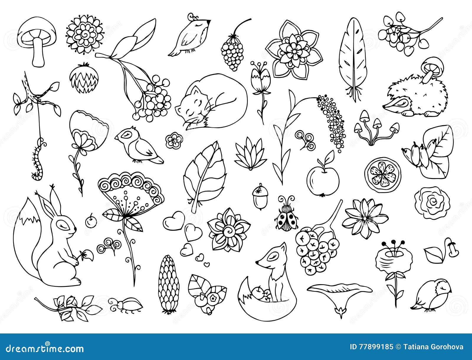 vector a ilustração e ajuste a floresta os animais e as flores