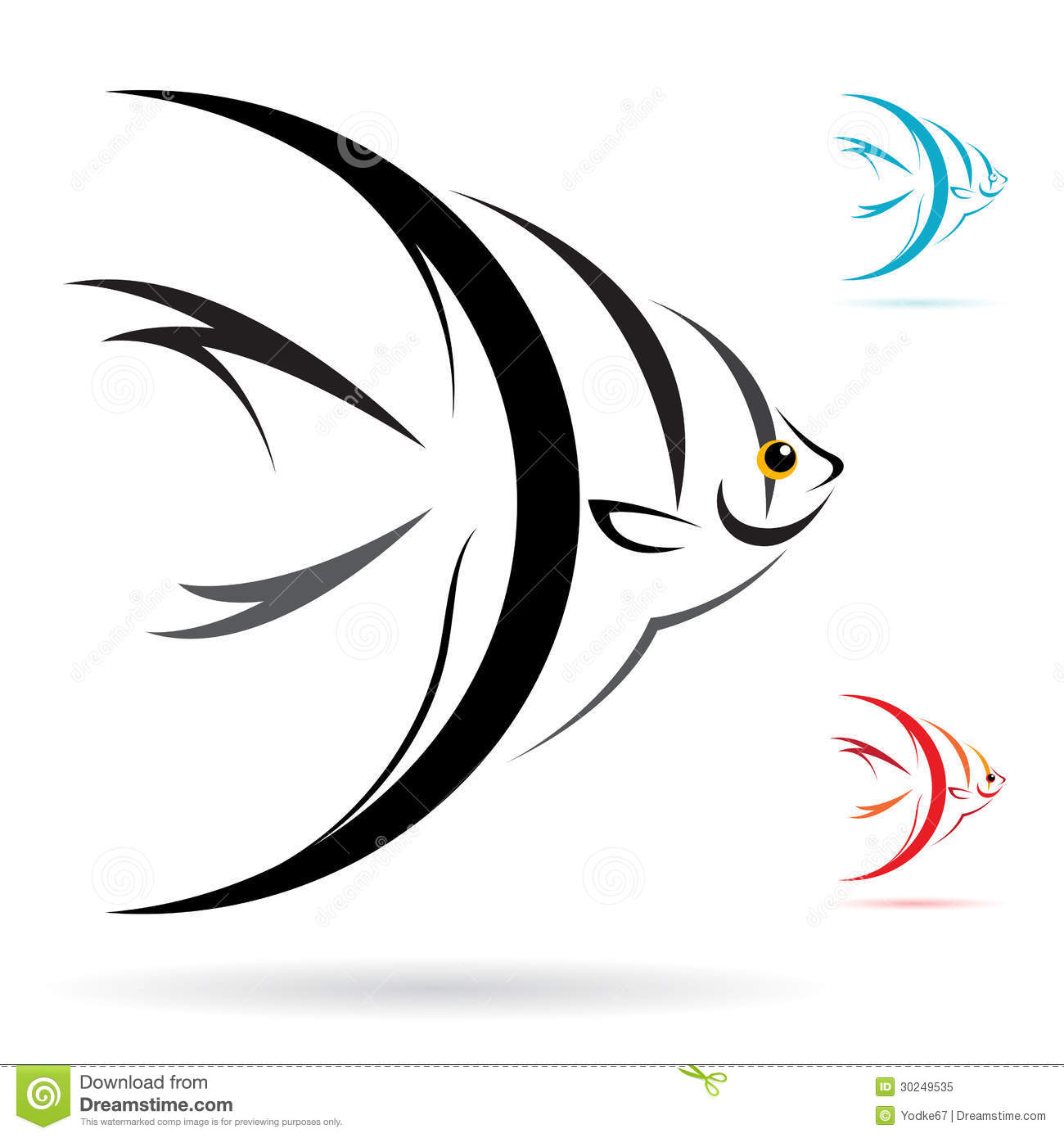vector image of an angel fish royalty free stock photo colorful angelfish clipart Dolphin Clip Art