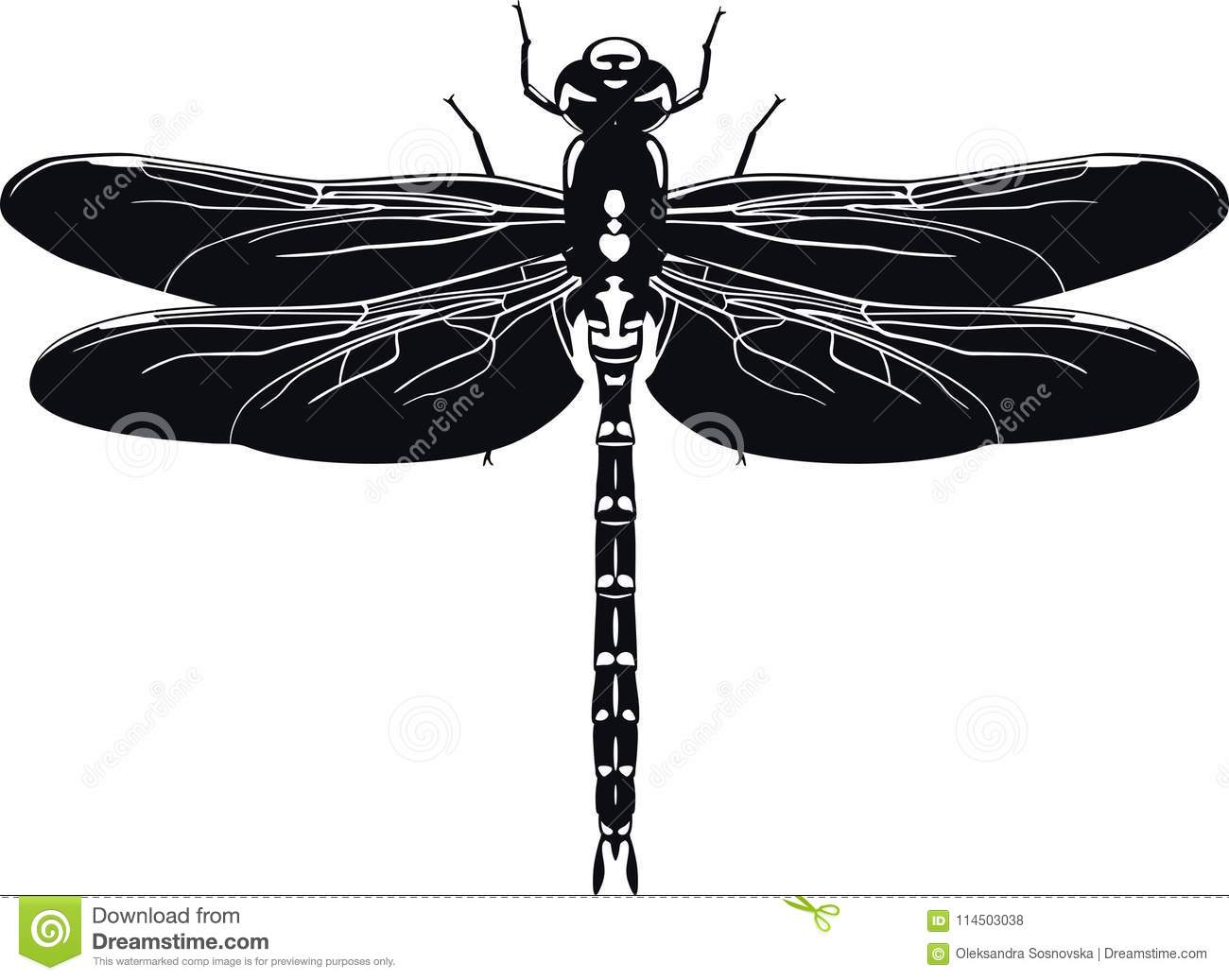 black silhouette of dragonfly on white background vector