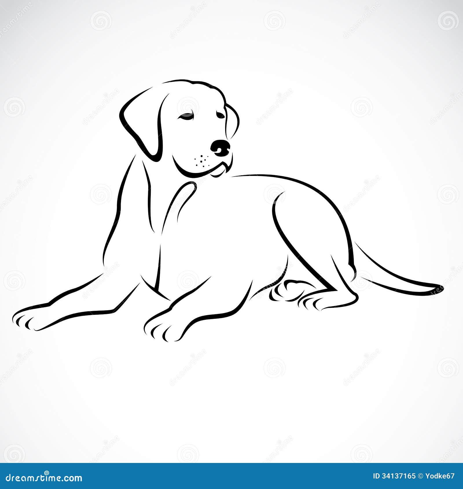 Vector Image Of An Dog Labrador Royalty Free Stock Photo Image 34137165