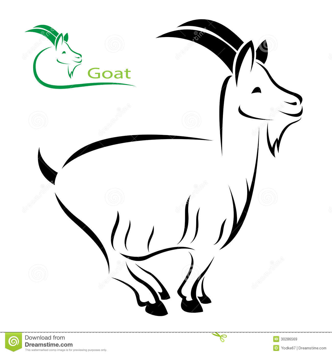 vector image of an goat stock vector image of face