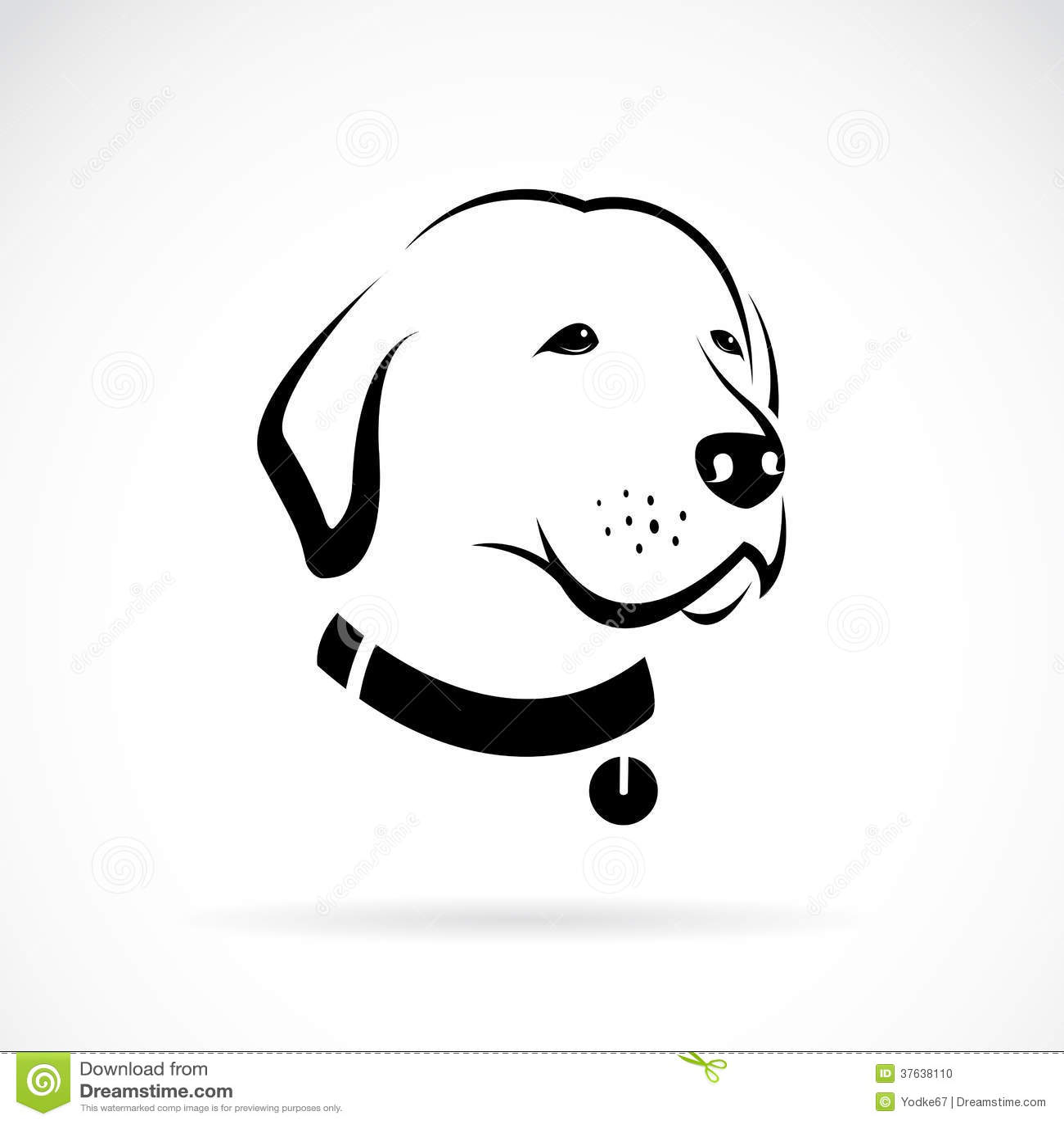 Vector Image Of An Labrador Dog's Head Stock Photo - Image: 37638110