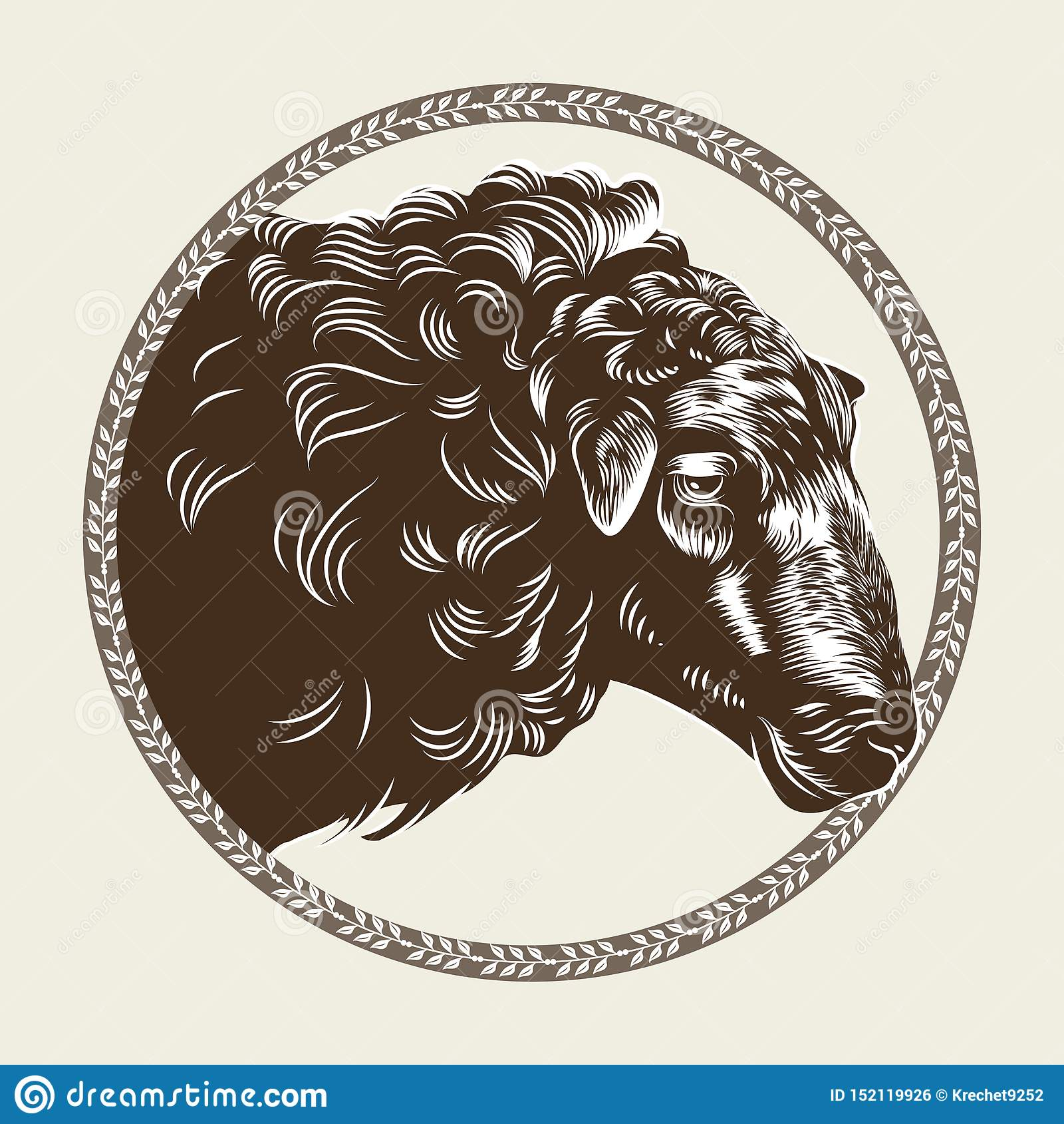 Vector image of a sheep`s head in the style of engraving. Agricultural vintage emblem.